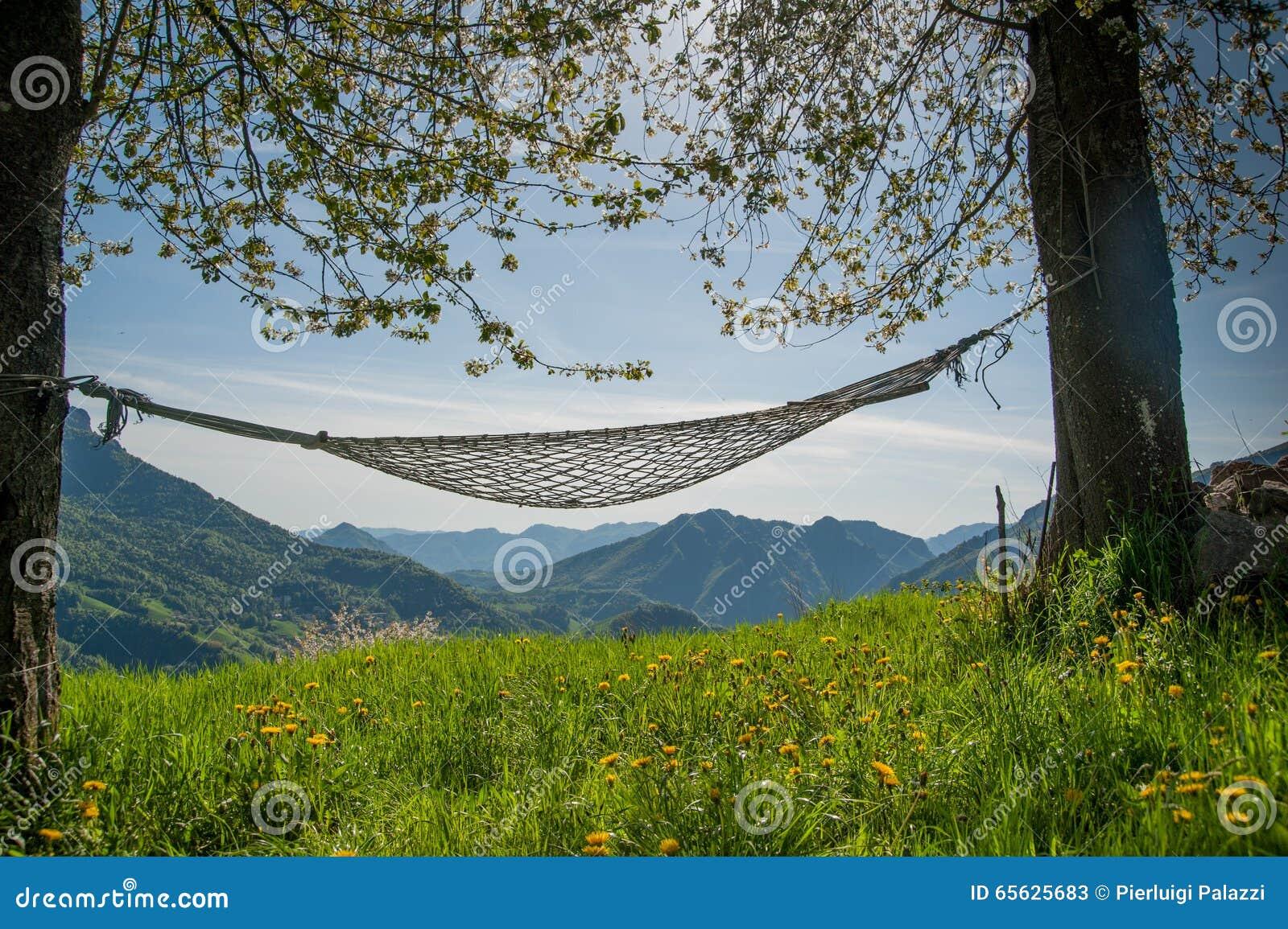 Hamac entre les arbres