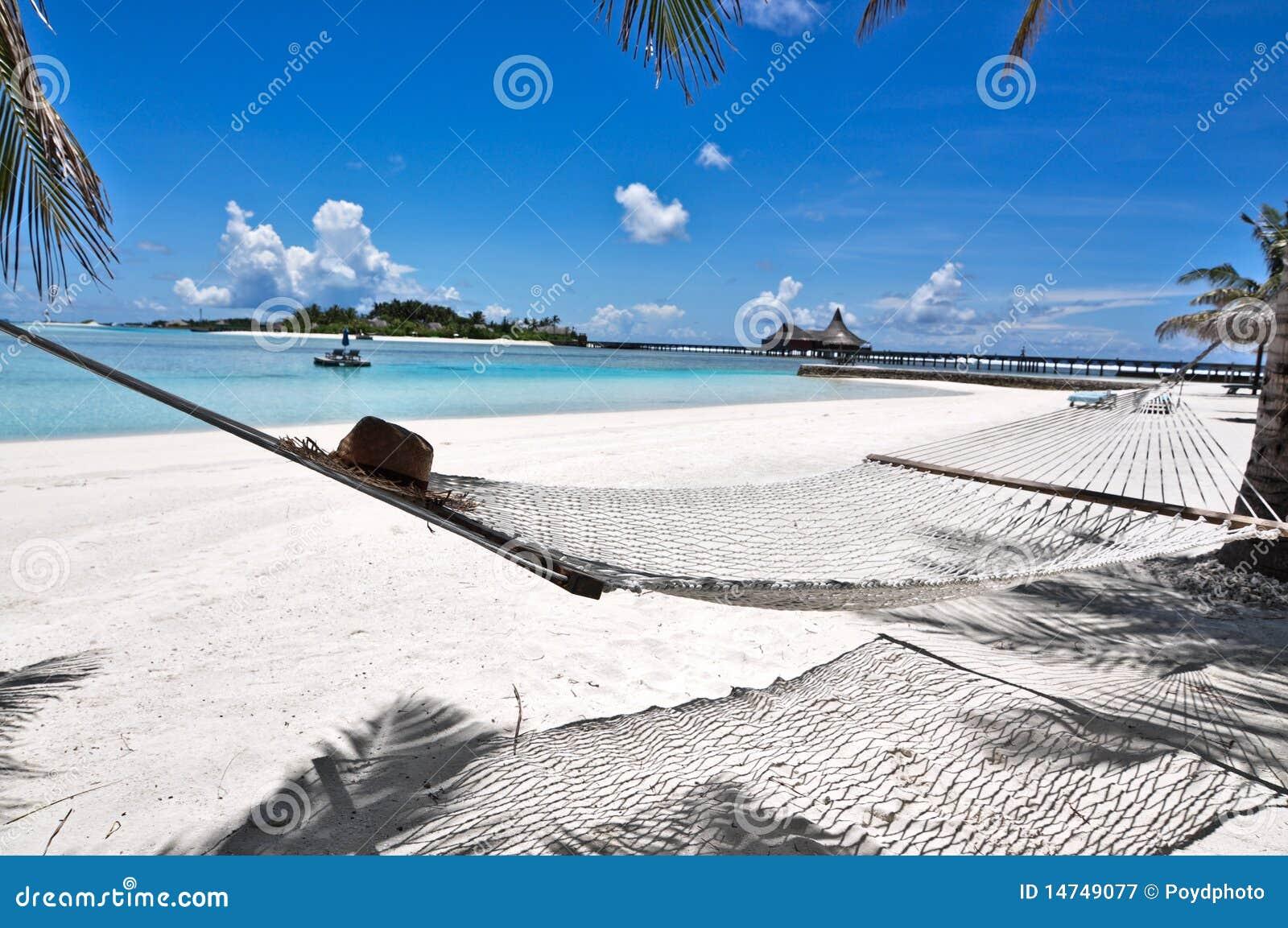 Hamaca maldives de la playa fotograf a de archivo libre de regal as imagen 14749077 - Fotos de hamacas en la playa ...