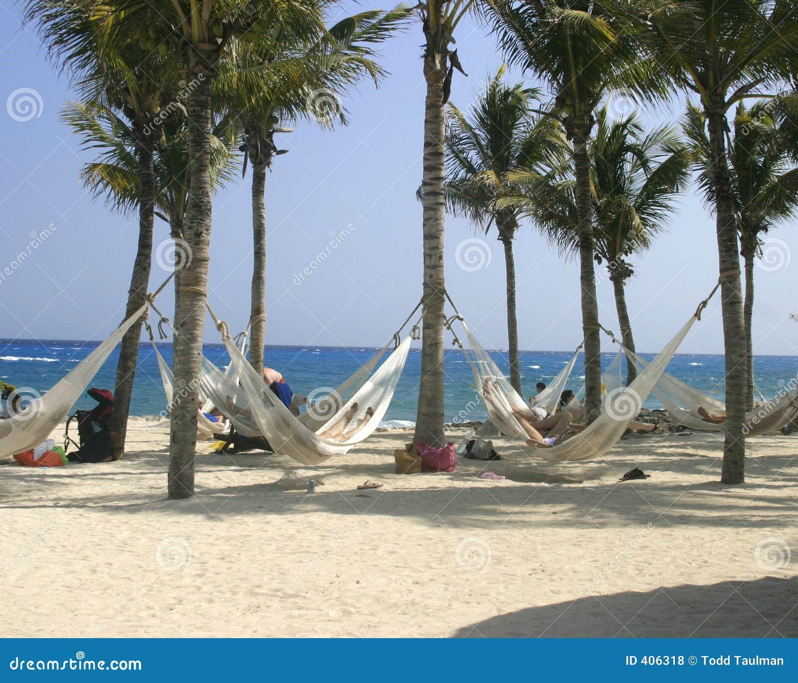 Hamacas En La Playa Fotos De Archivo Libres De Regal As