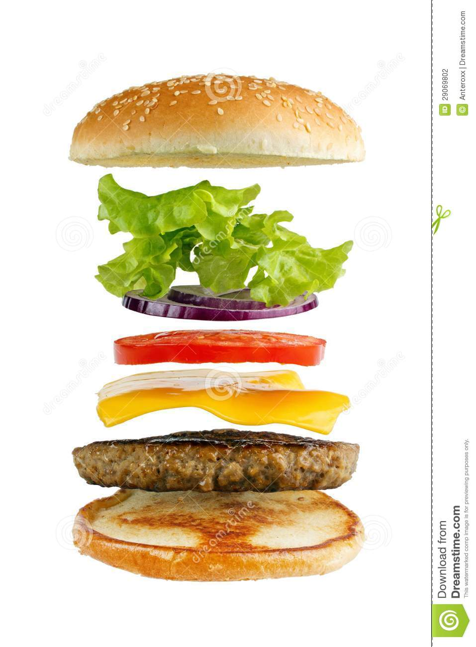 Hamburger Ingredients Stock Photography - Image: 29069802