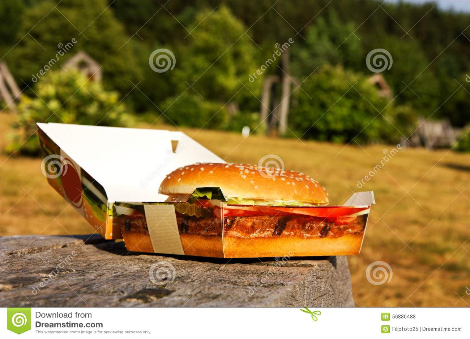 Hamburger in una scatola