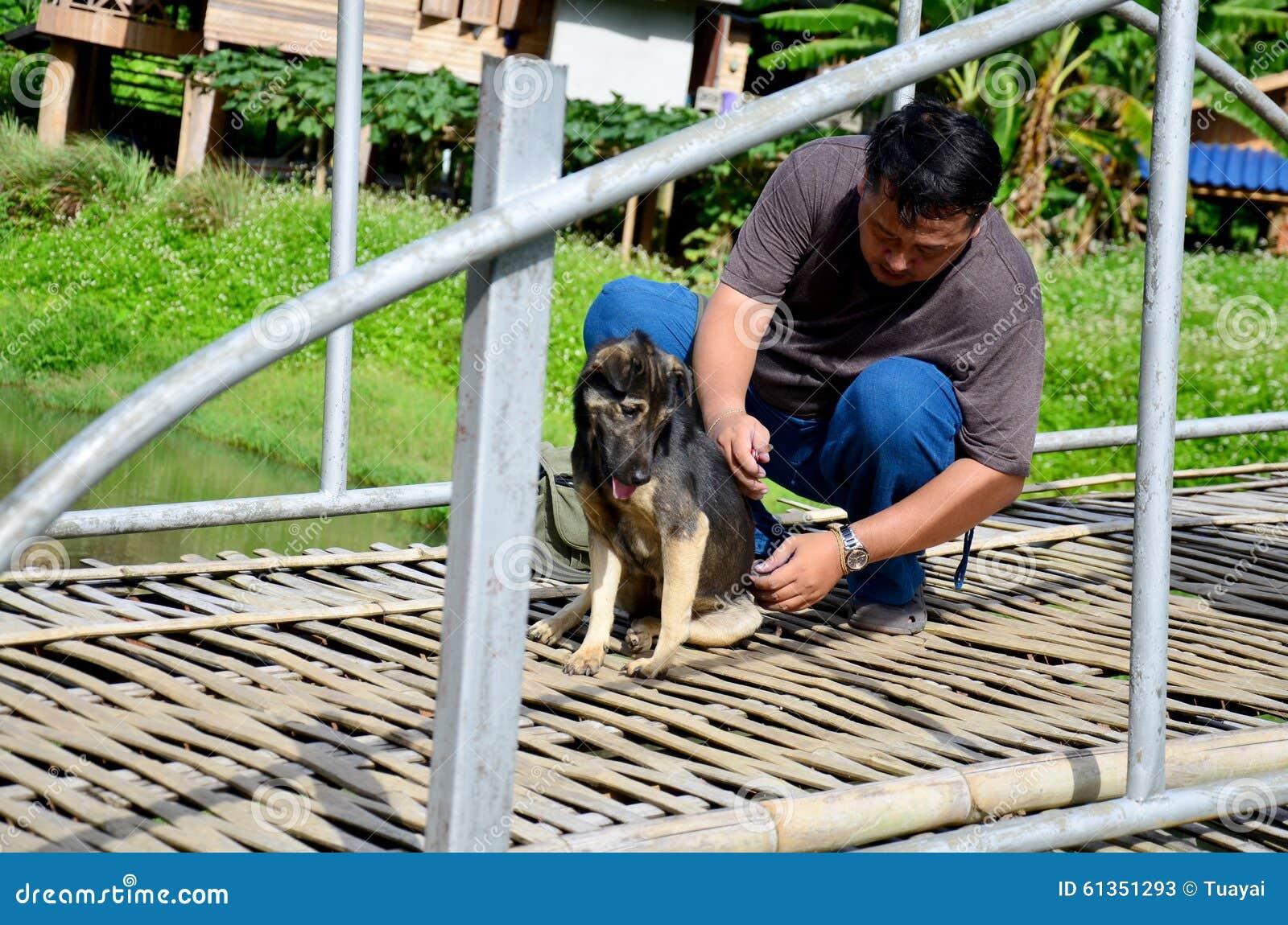 Hameçon de aide de mouvement d homme thaïlandais de dos de chien
