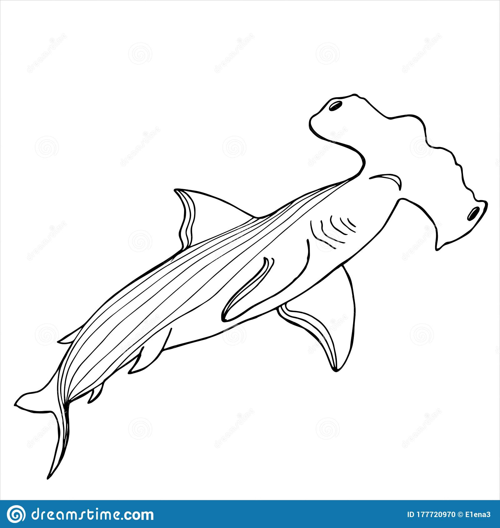 - Hammerhead Shark. Coloring Book. Hand Drawing Coloring Book For