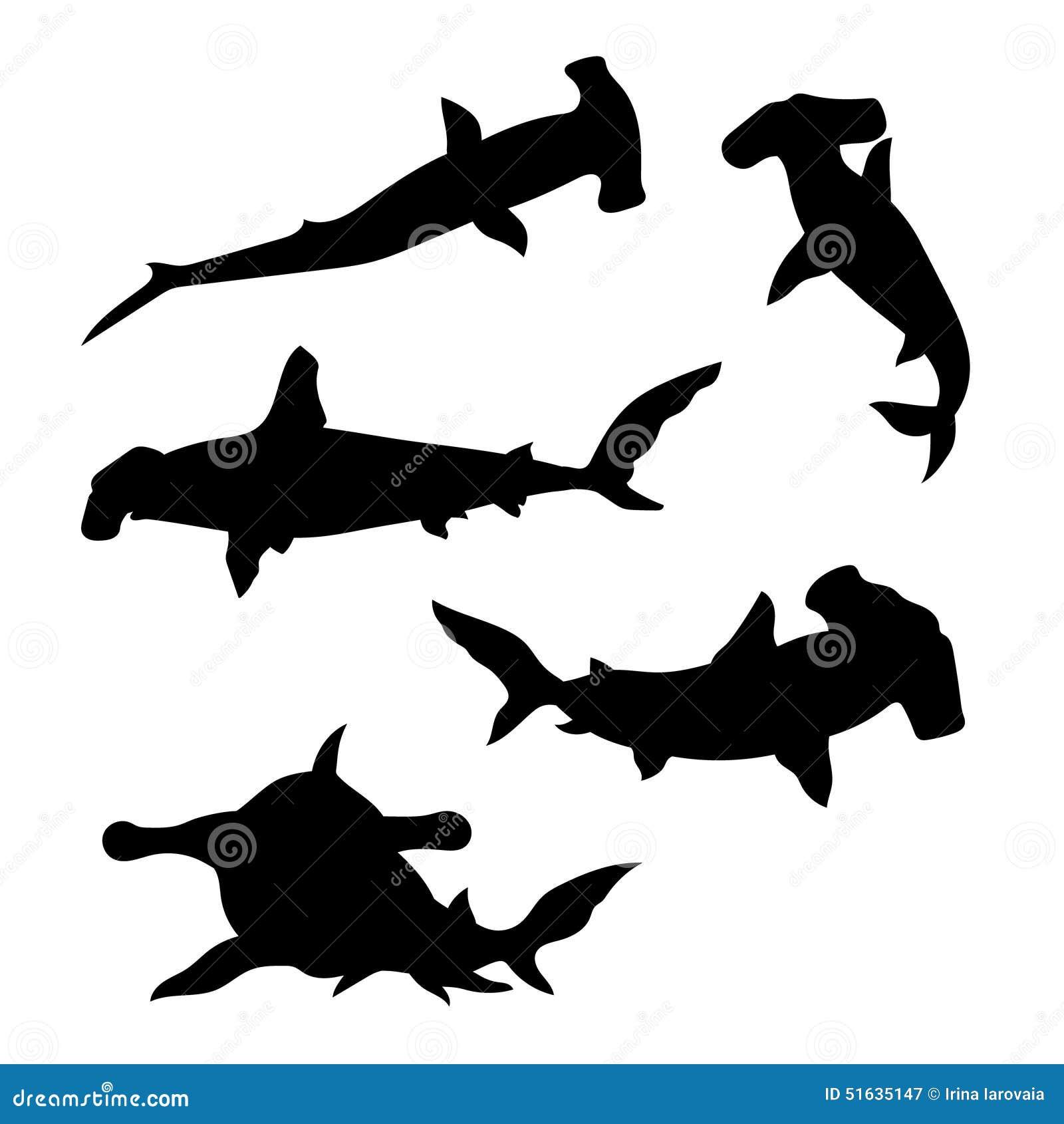 Hammerhead Shark Set Vector Stock Vector - Illustration of ...