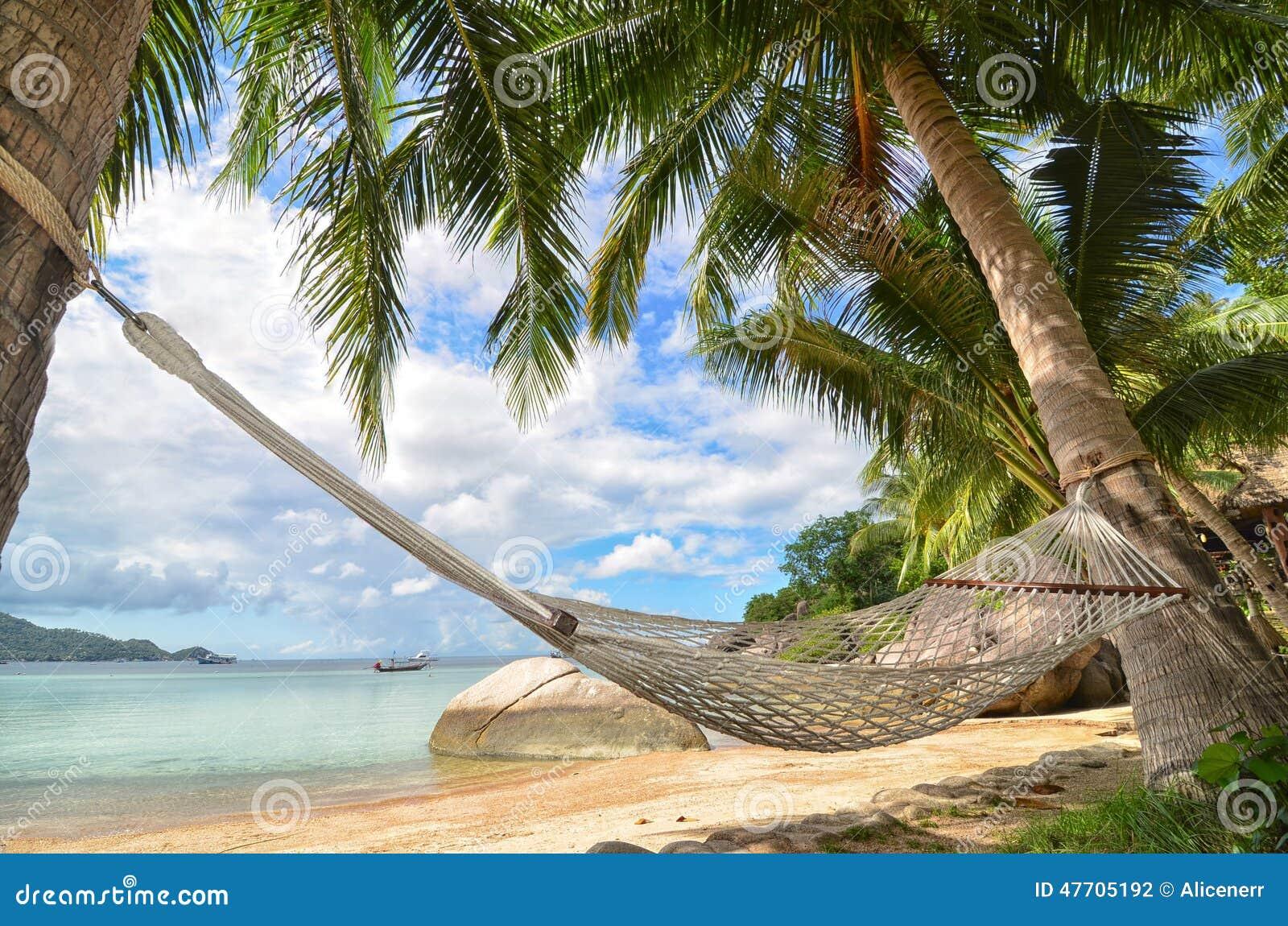 Hammock смертная казнь через повешение между пальмами на песчаном пляже и морским побережьем