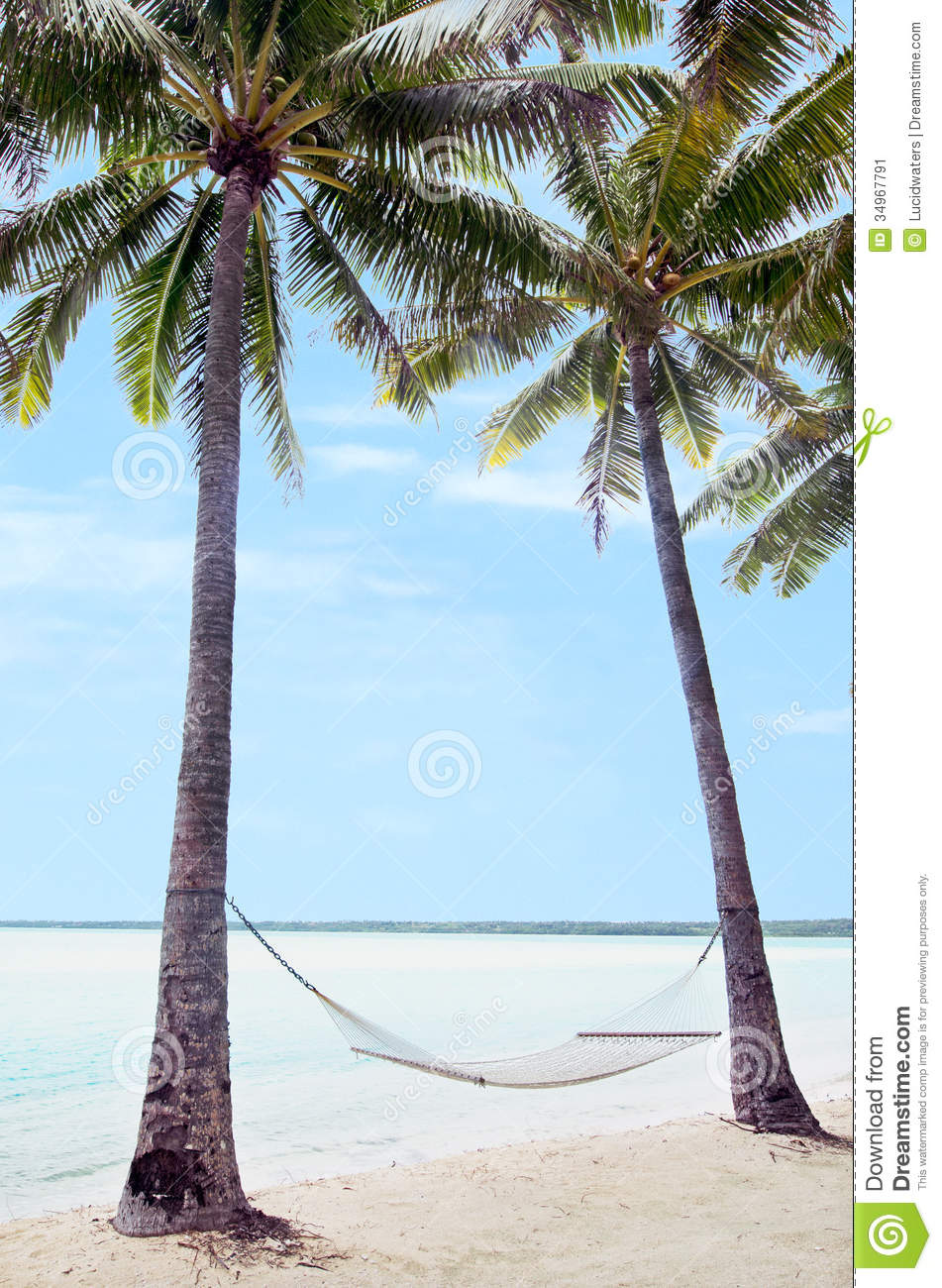 Hammock On Coconut Trees In Tropical Island Stock Image