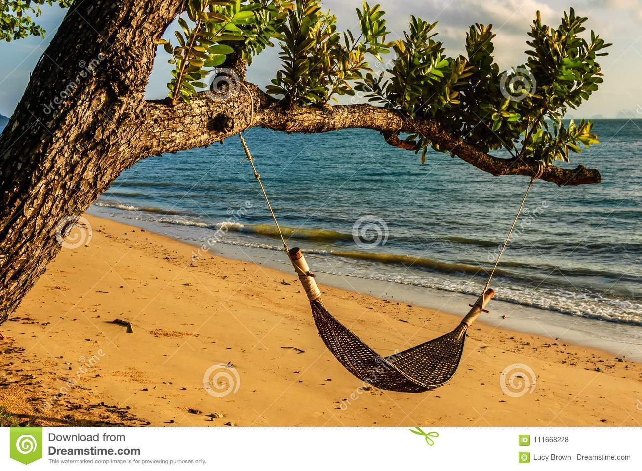 Hammock Hanging From Tree By Beach Thailand Stock Photo Image Of