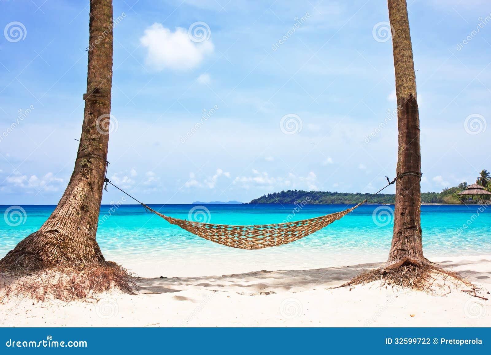 Hammock Between Palm Trees Stock Photography Image 32599722
