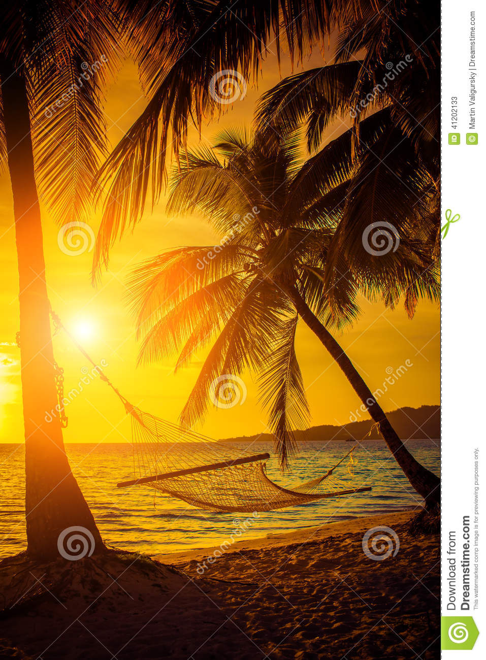 Hammock Silhouette With Palm Trees On A Beautiful At ...