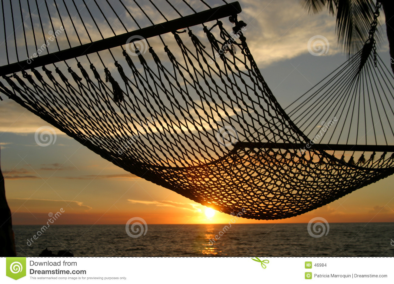 Hammock Sunset