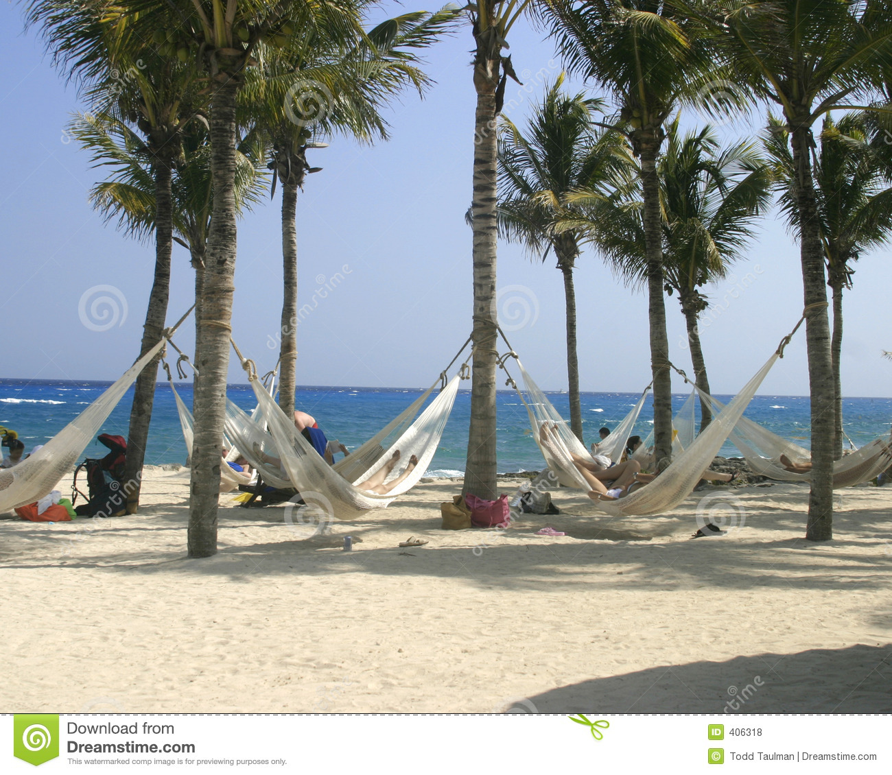 Hammocks on the beach attached to palm trees overlooking the ocean in ...