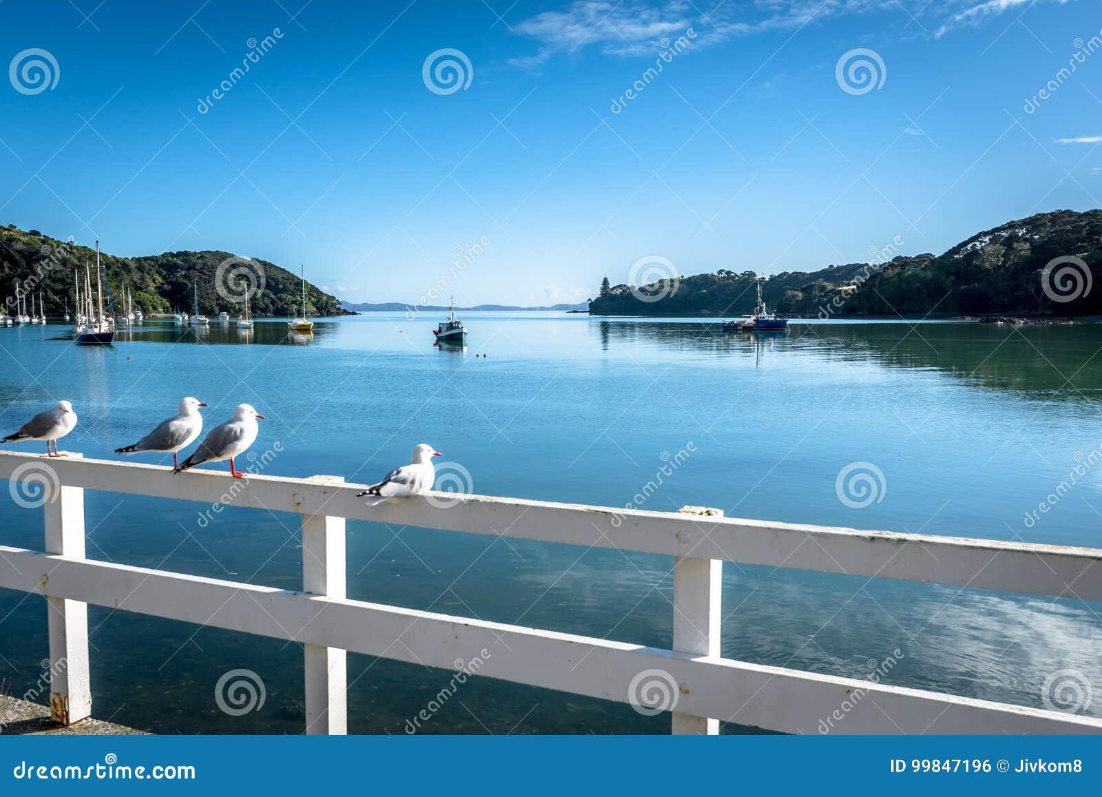 Hamn av Mangonui, Nya Zeeland