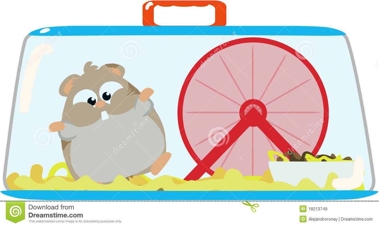 Hamster In Cage Royalty Free Stock Images Image 18213749