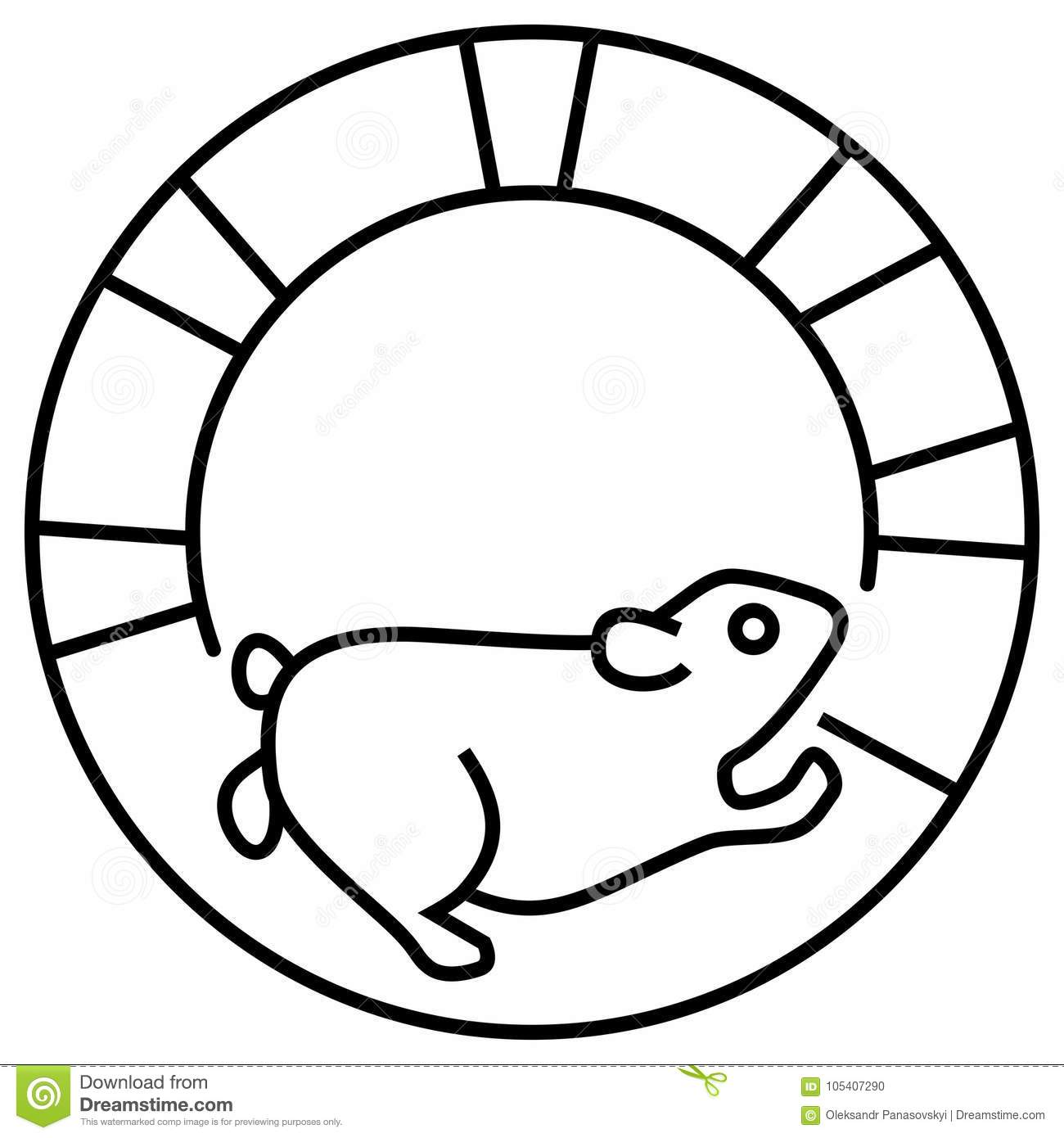 hamster running on a track, getting a workout on spinning wheel