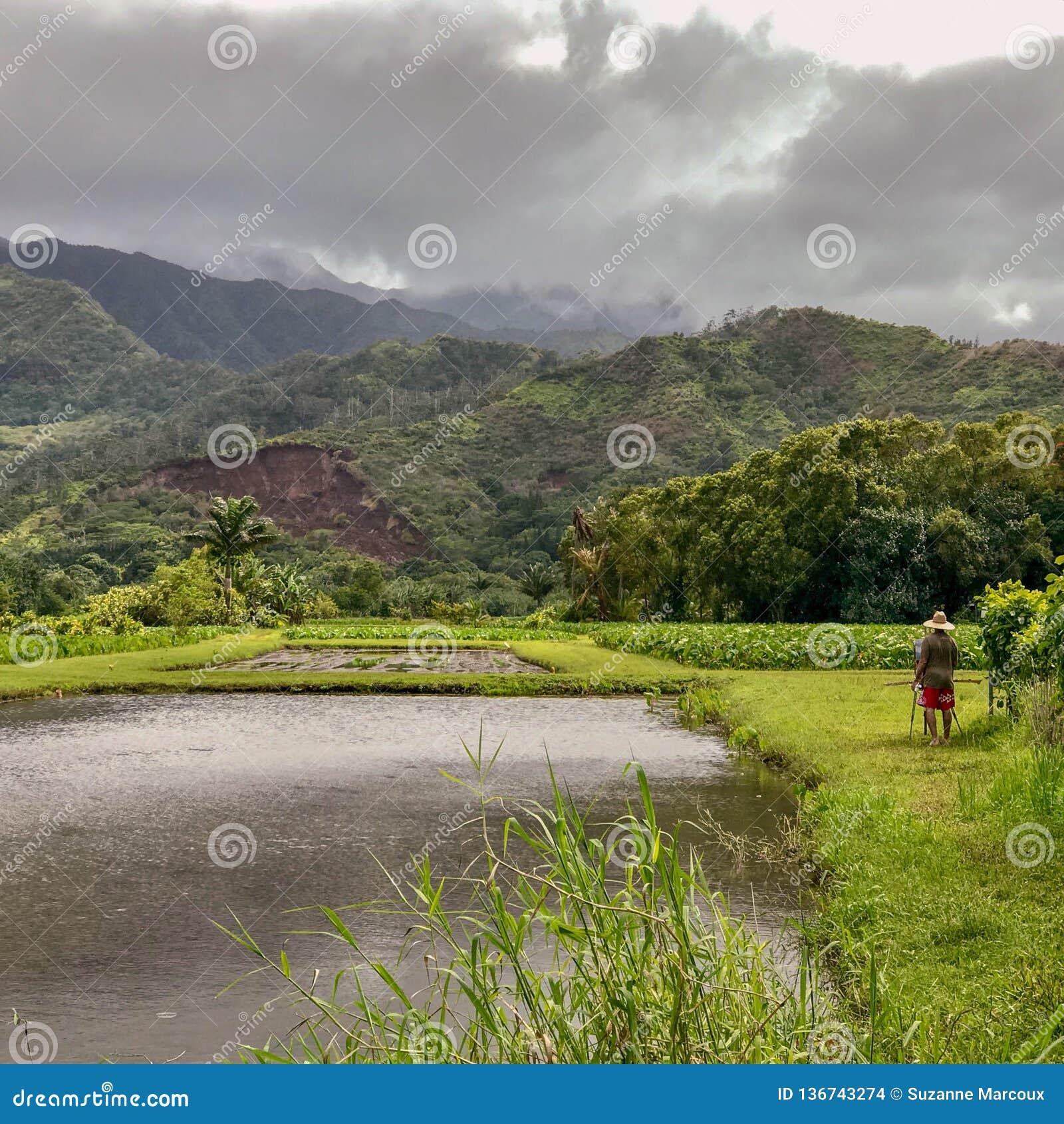 Hanalei, Kauai, Hawaï, de V.S.