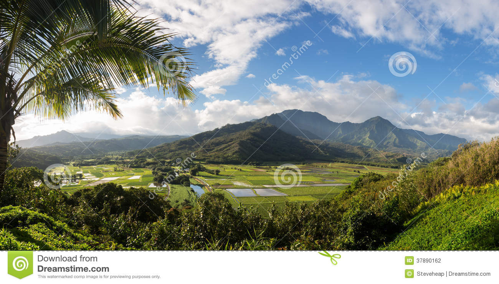 Hanalei-Tal von Princeville übersehen Kauai