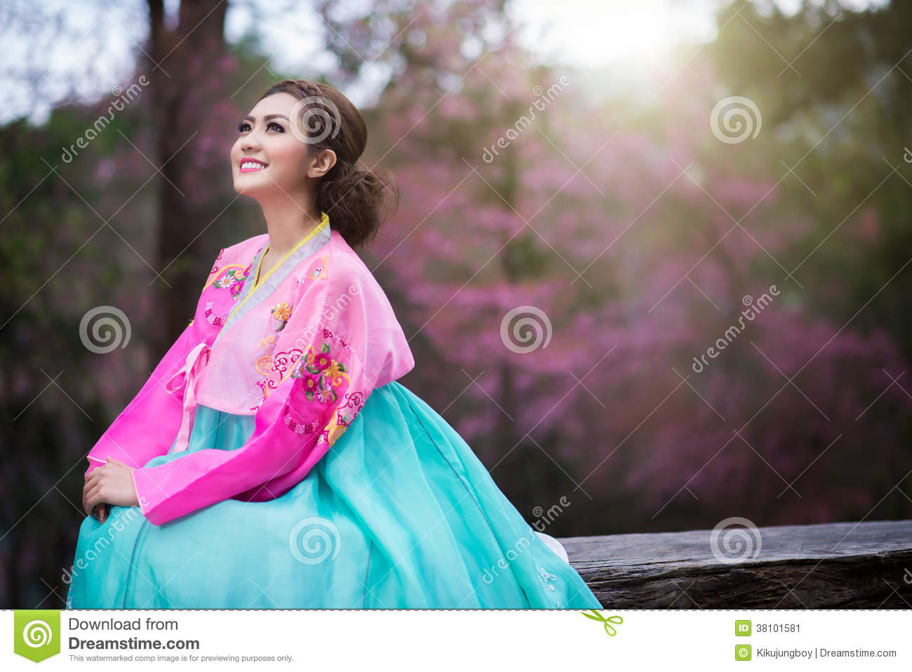 Beautiful Japanese Girl Traditional Dress