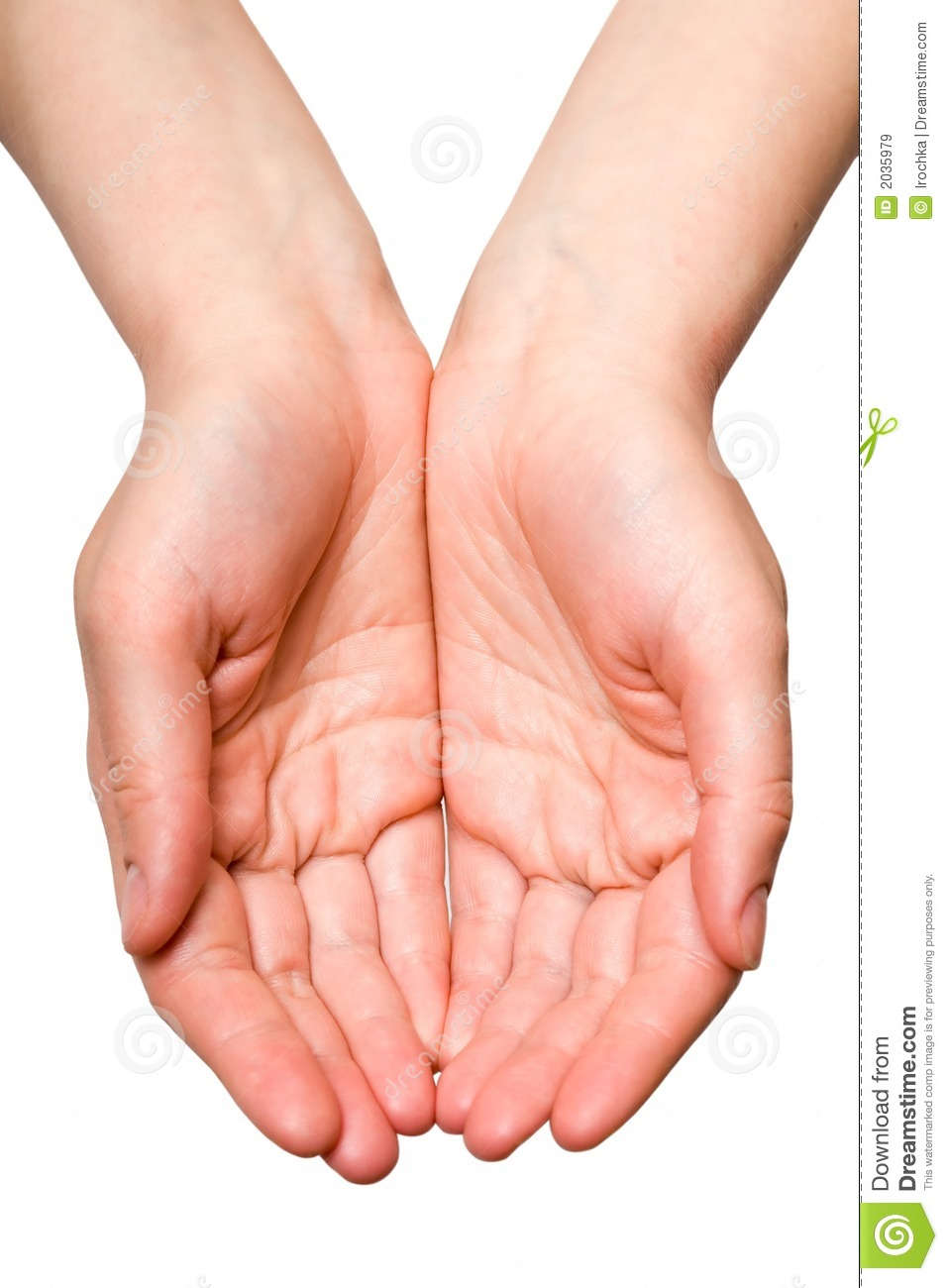 ... Free Stock Images - Image: 2035979 Open Hands Clipart Black And White