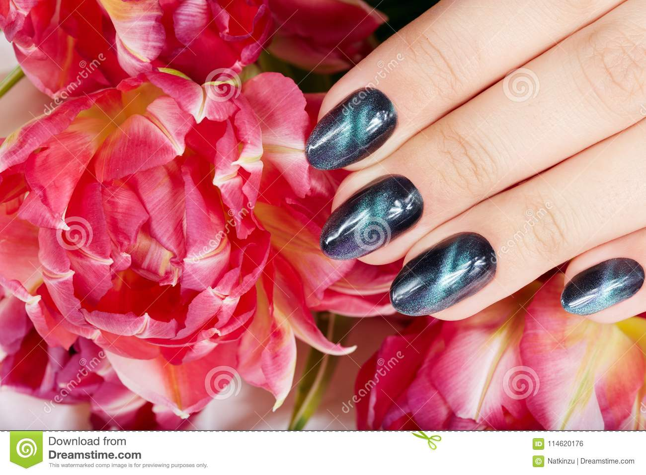 Hand With Manicured Nails With Cat Eye Design Stock Photo - Image of ...