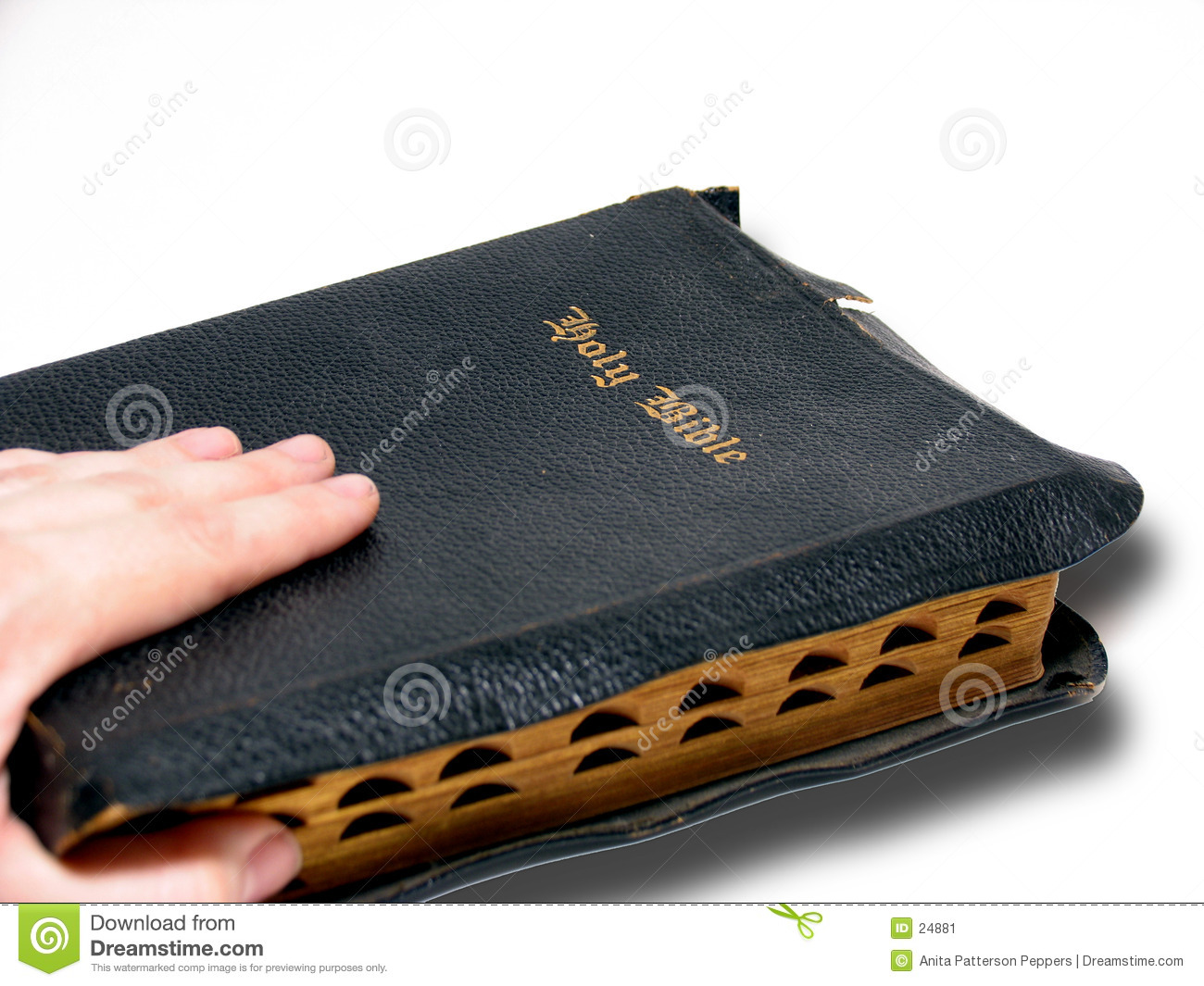 Hand and Bible