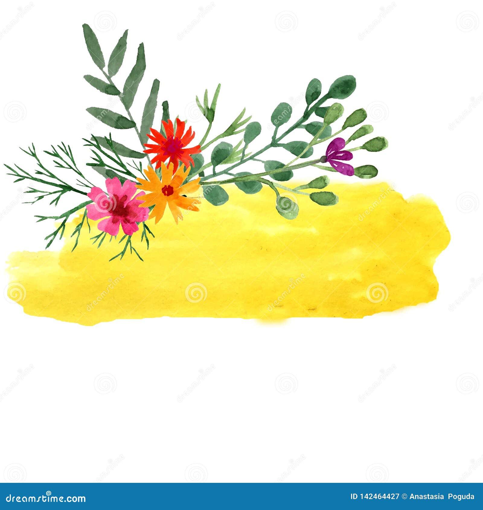 Hand, die gelbe Schablone des Aquarells mit wilden Blumen ertrinkt