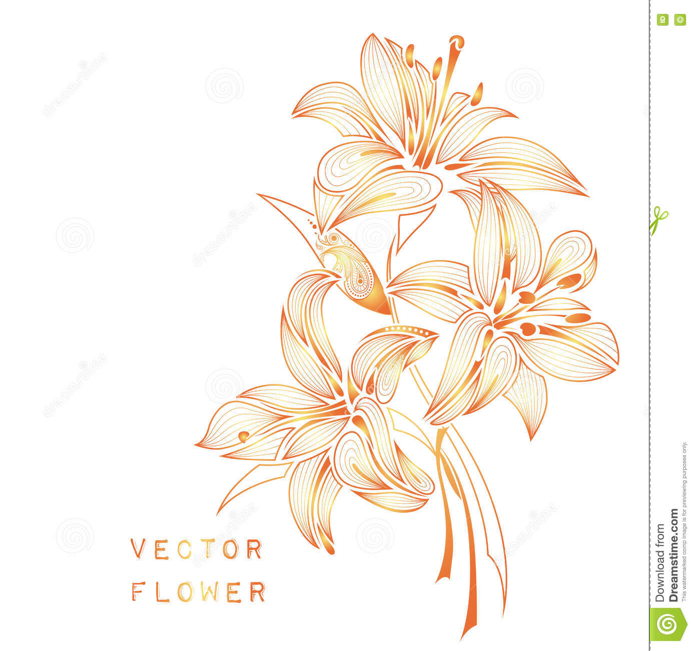Hand Draw Abstract Lily African Indian Floral