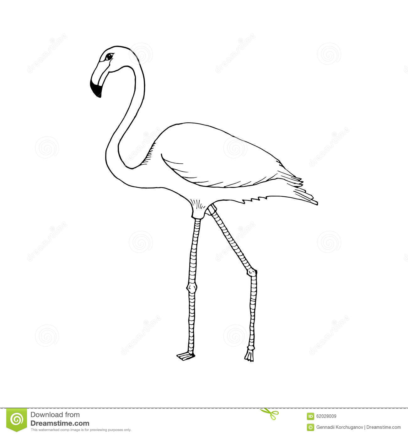 Flamingo beak template 28 images inspiration and realisation flamingo beak template draw flamingo style sketch on a black white stock pronofoot35fo Images