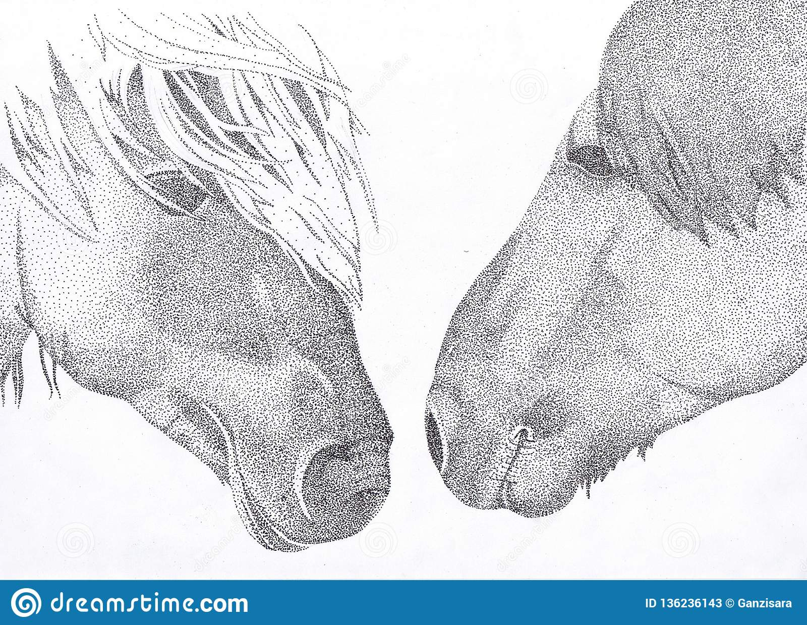 Hand Draw Illustration Of Two Horses With The Technique Of Pointillism Stock Illustration Illustration Of Black Background 136236143