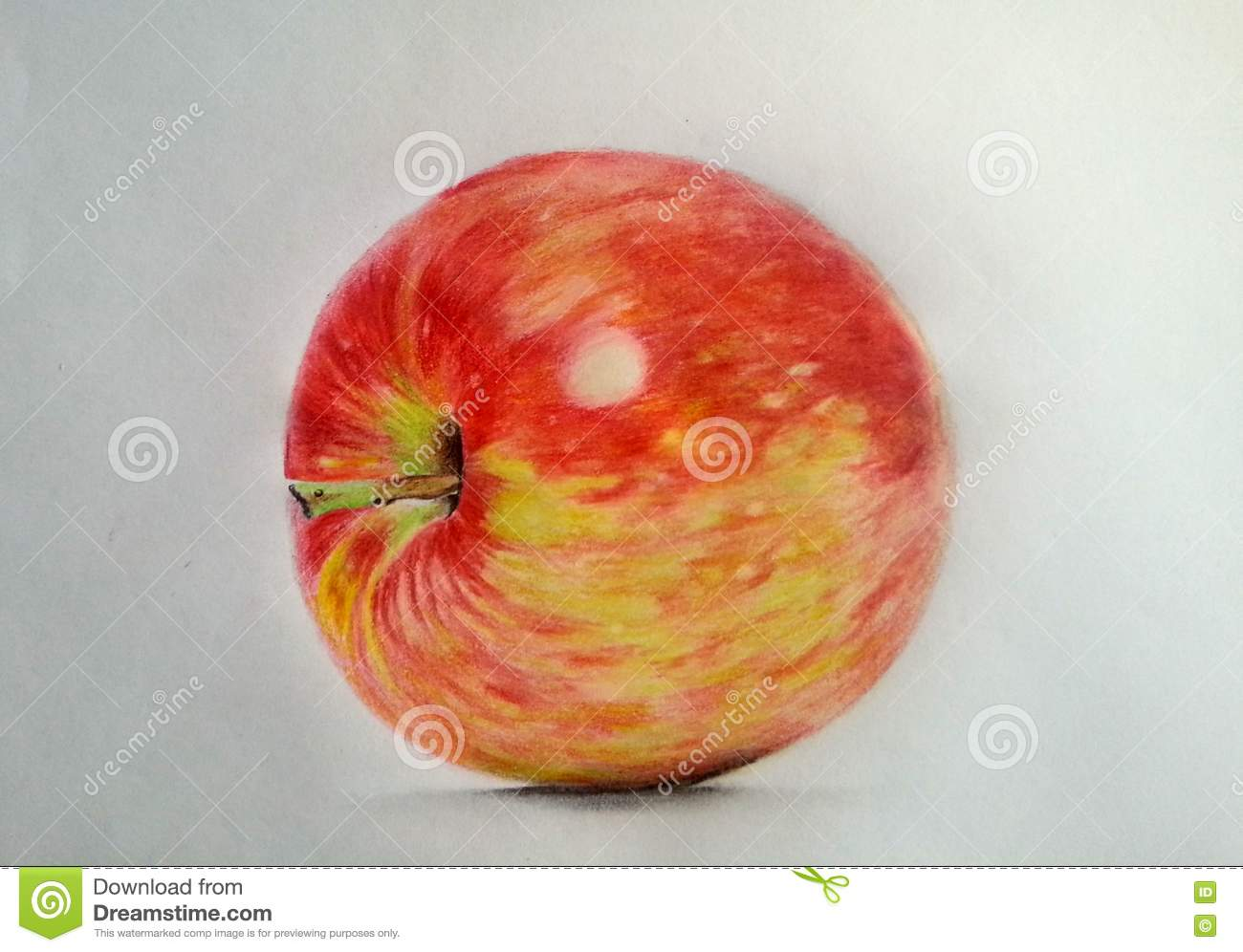 Hand draw apple realistic colored pencils