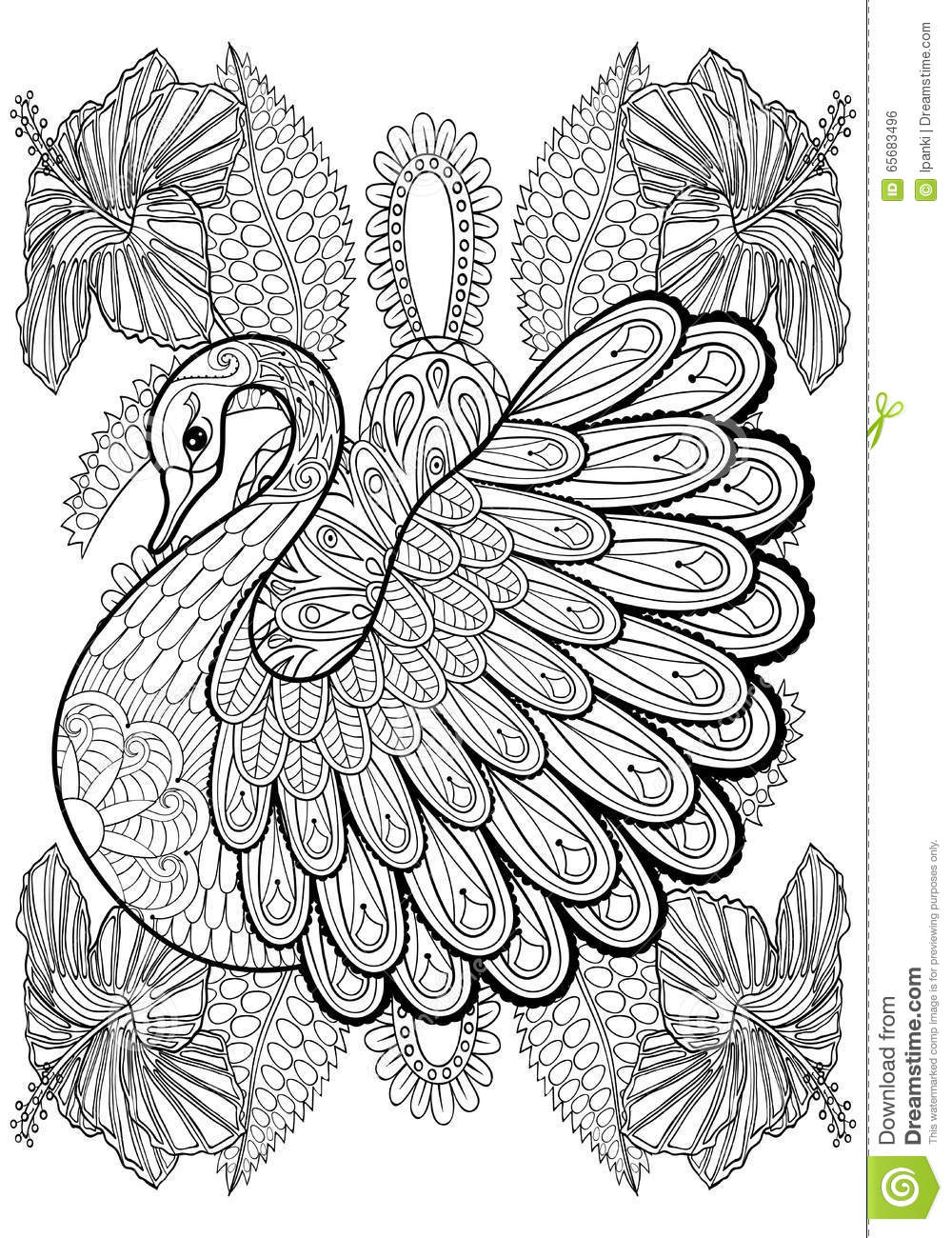 Hand Drawing Artistic Swan In Flowers For Adult Coloring Pages ...