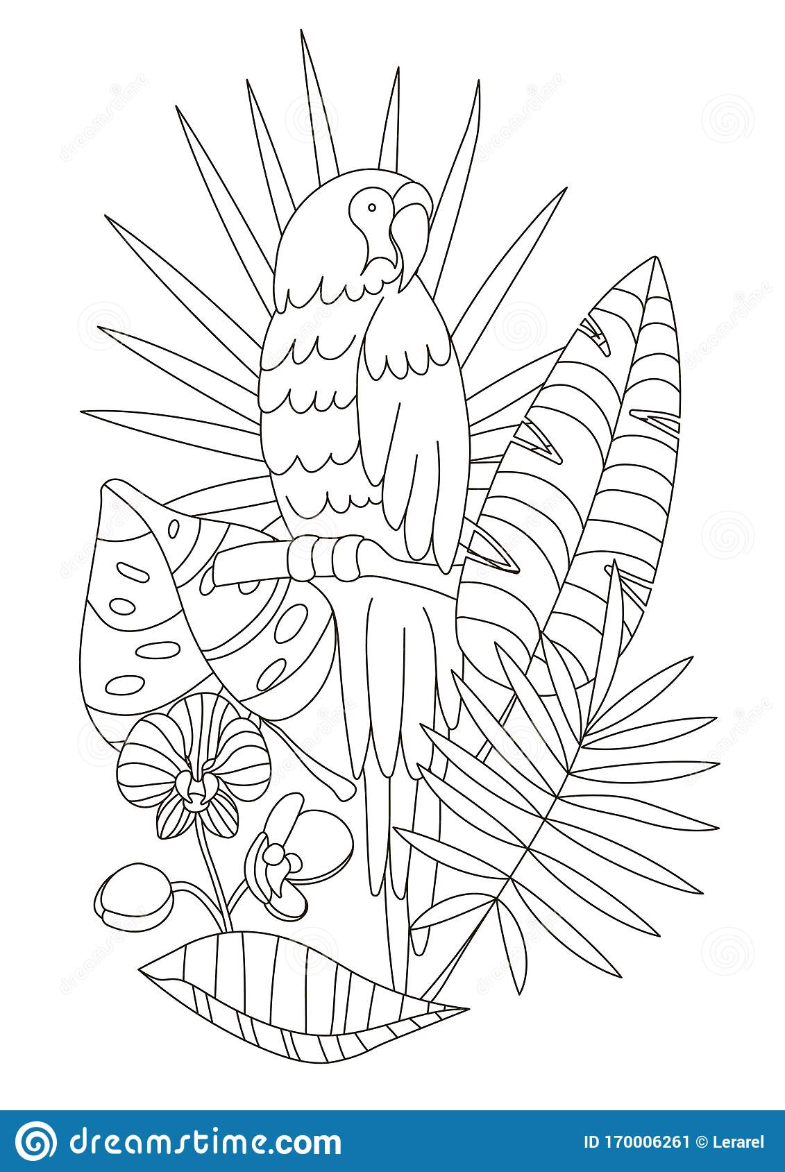 Flower Pen Drawing - Tropical Flower Coloring Pages, HD Png ...   1689x1131