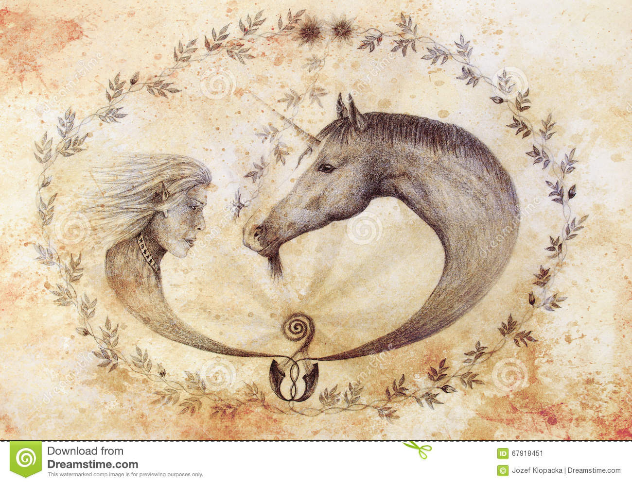 Drawingcolor Beautiful Horse Drawing Color Royalty Free Stock Image Image