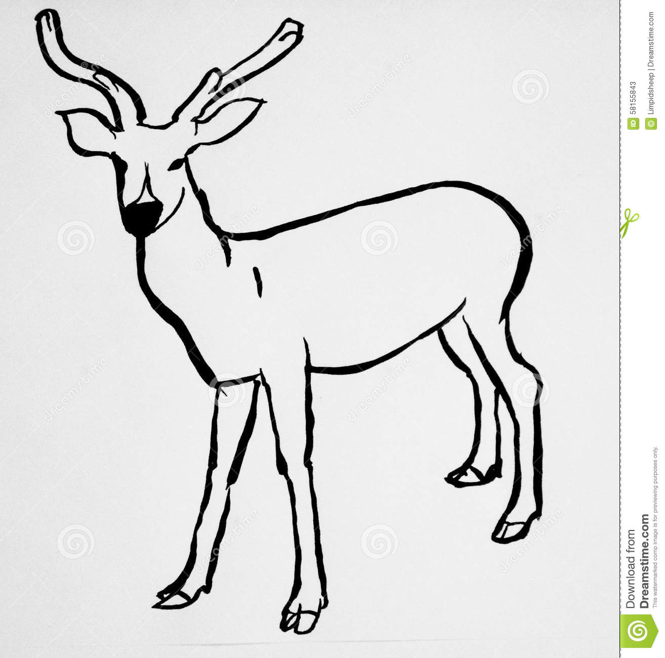 Deer Contour Line Drawing : Deer contour drawing illustration isolated stock vector