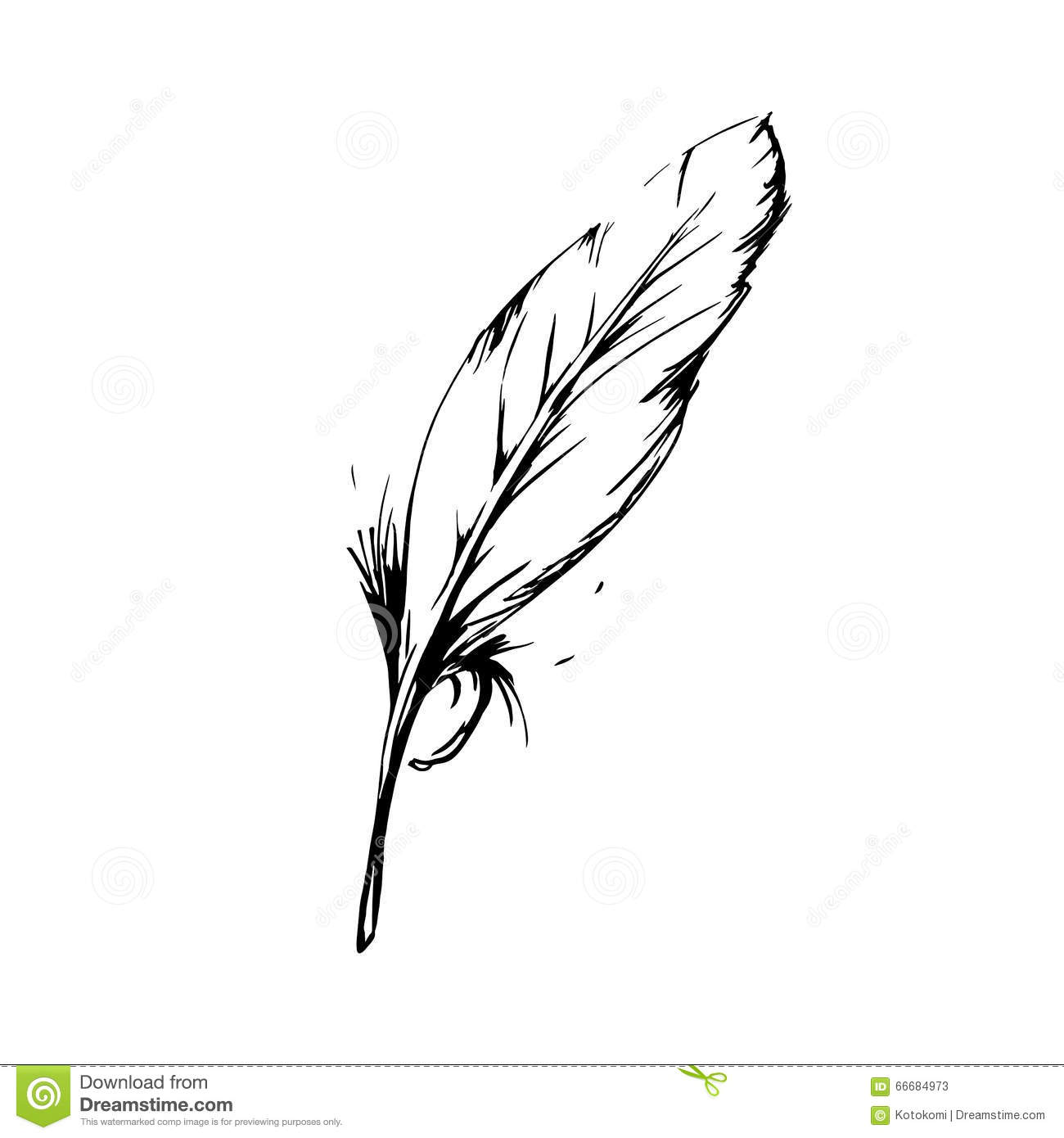 Hand drawn bird feather symbol of knowledge writing and learning hand drawn bird feather symbol of knowledge writing and learning vector black and biocorpaavc Image collections