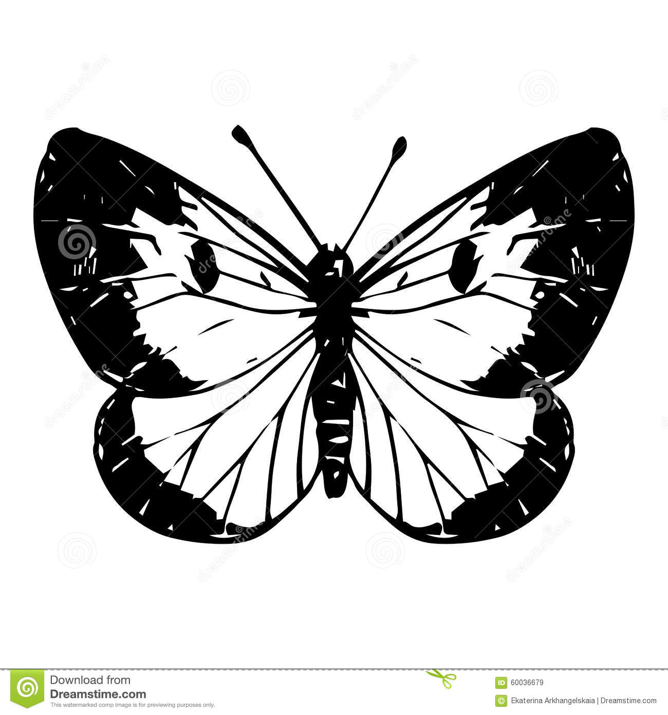 Hand drawn butterfly stock vector. Illustration of cute ...