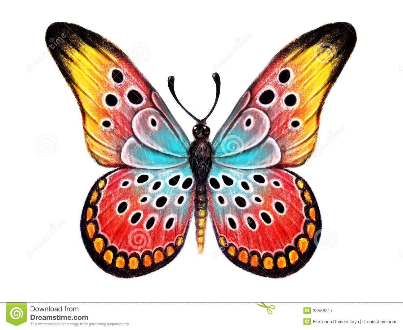 Hand Drawn Butterfly On White Background Stock Image ...