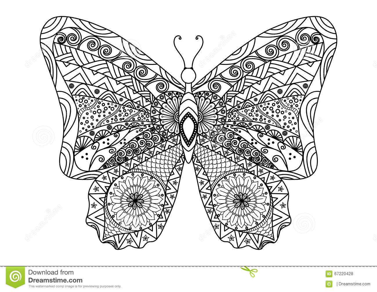 Hand Drawn Butterfly Zentangle Style For Coloring Book