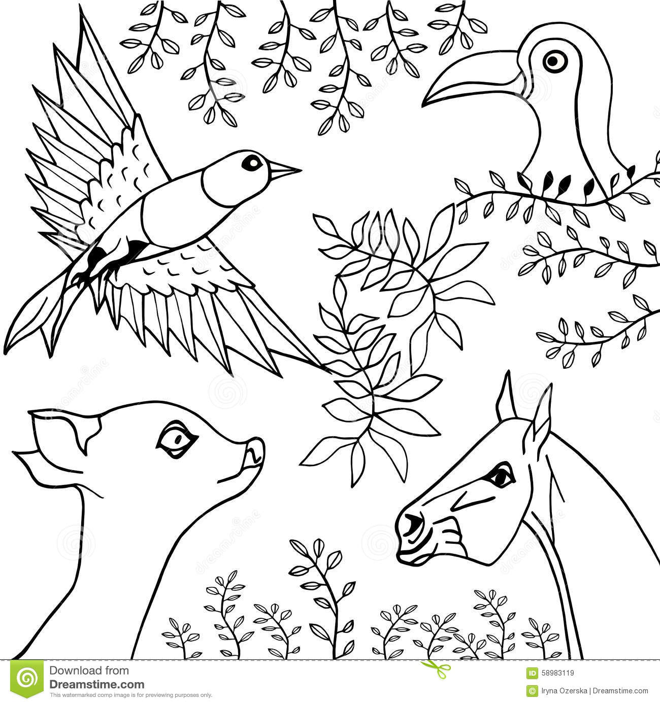 Hand Drawn Collection Of Animals Birds And Plants