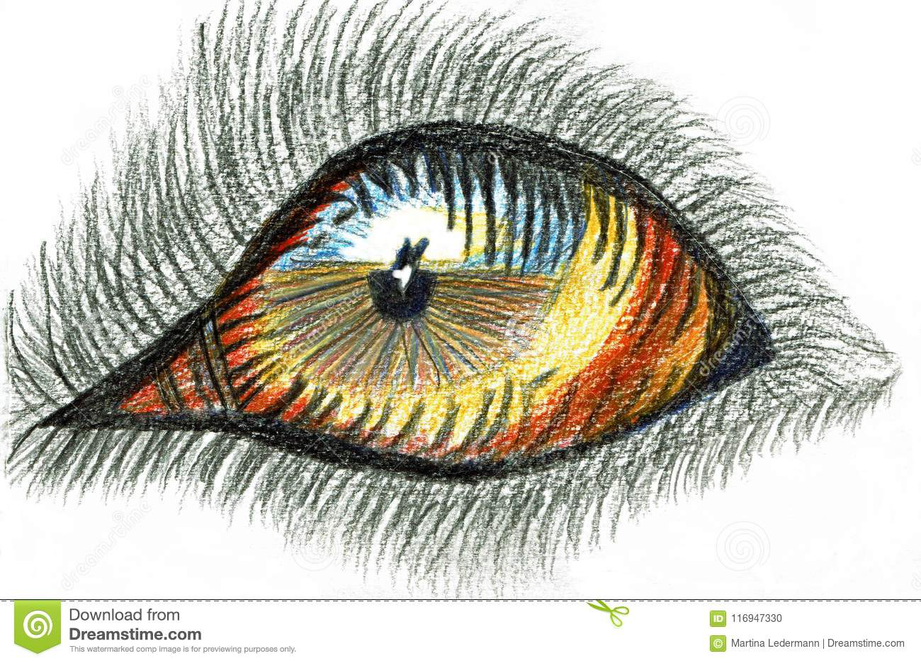 Dogs eye colored pencil drawing stock vector illustration of