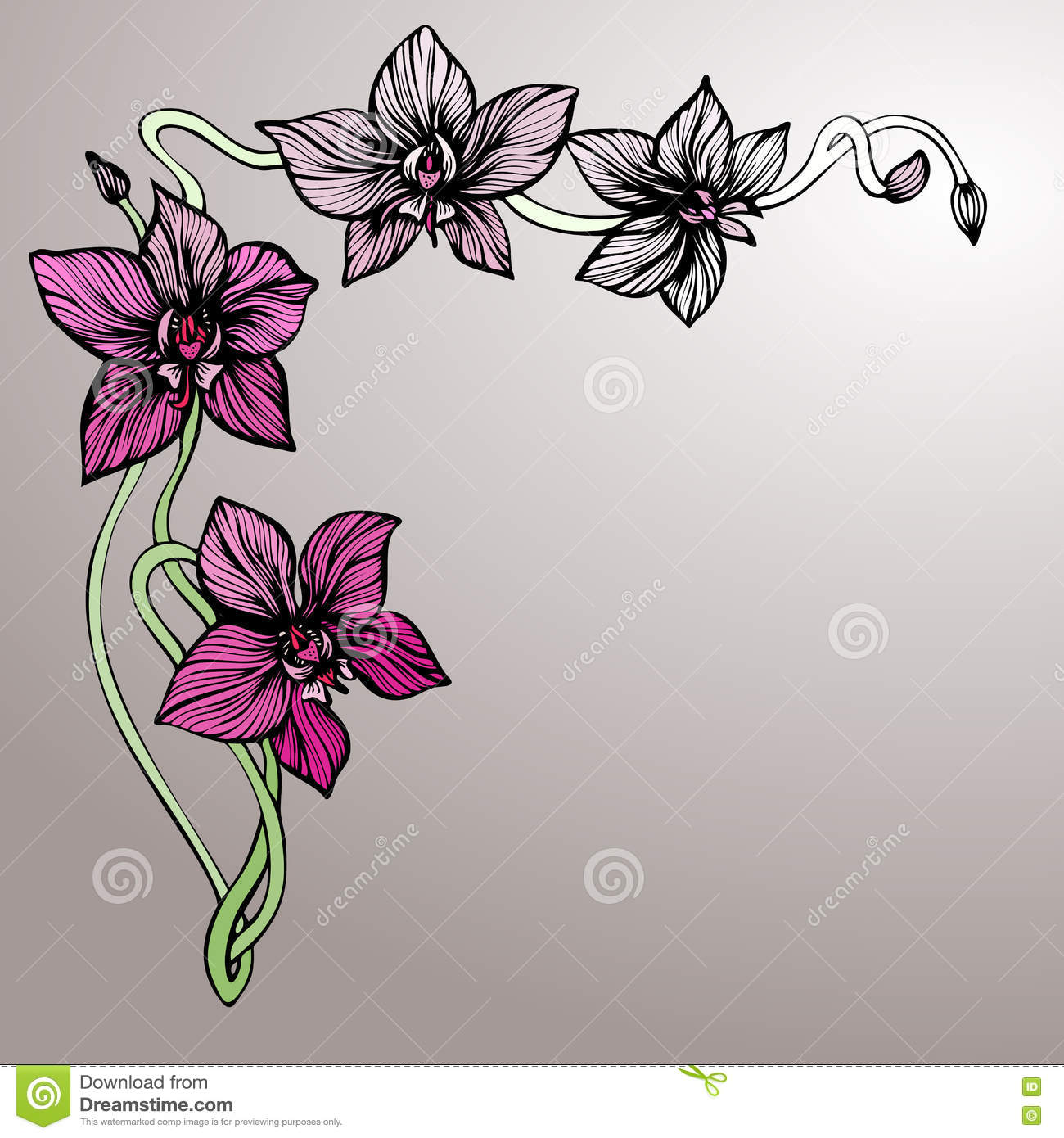 Vector Hand Drawn Fl Background With Orchid And Blots