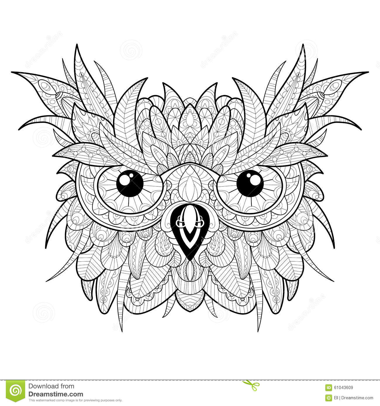 hand drawn cute owl portrait for coloring stock vector