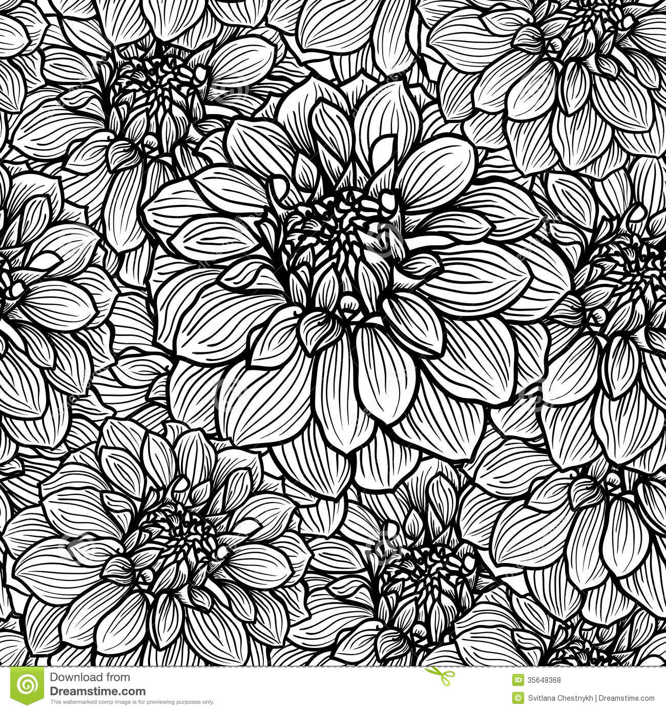 Black Flower On White Background Royalty Free Stock: Hand Drawn Dahlia Flower Stock Vector. Image Of Beautiful