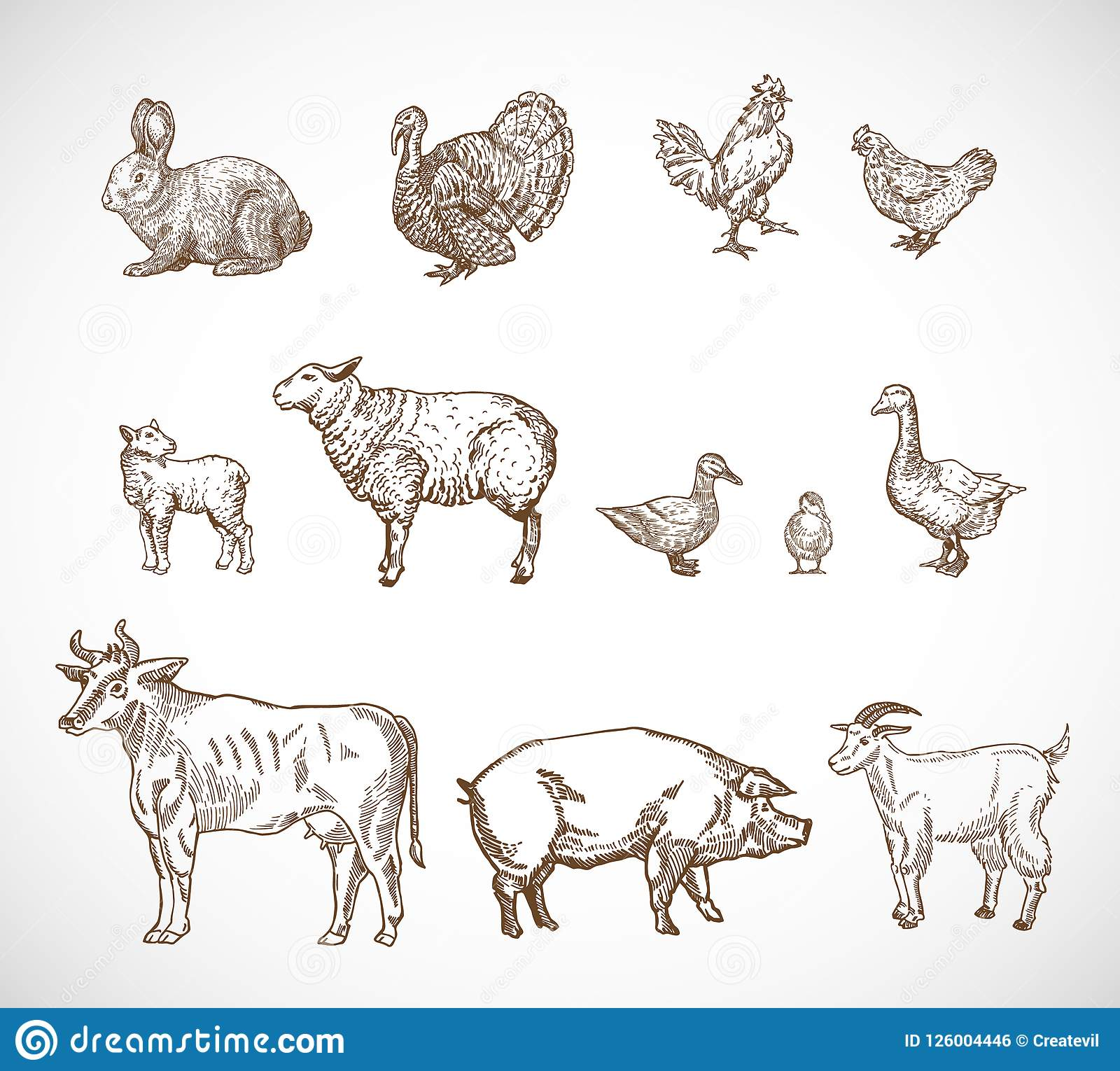 Hand Drawn Domestic Animals Set. A Collection of Pig, Cow, Goat, Lamb and Birds Sketch Silhouettes. Engraving Style