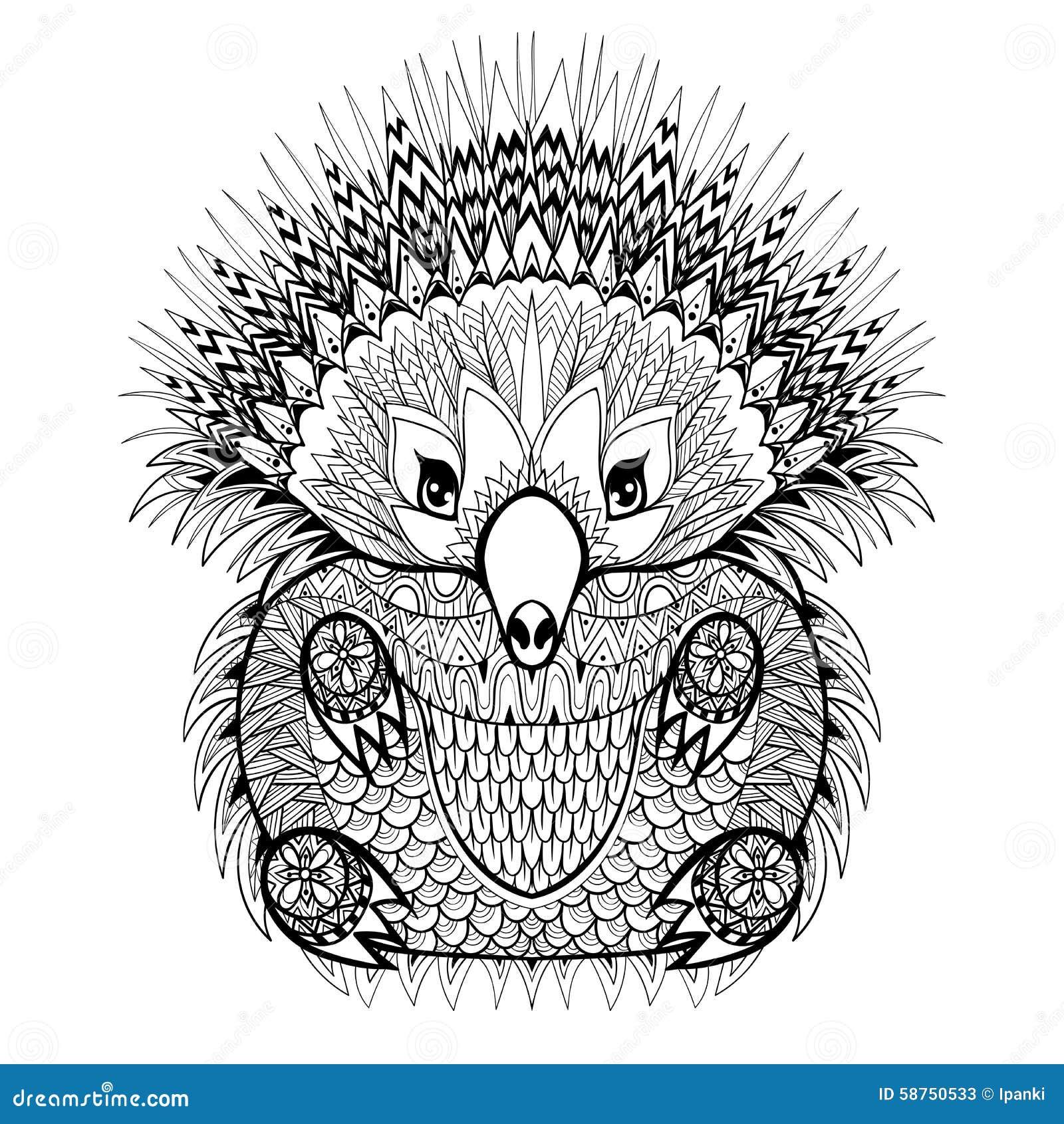 Hand Drawn Echidna Australian Animal Illustration For