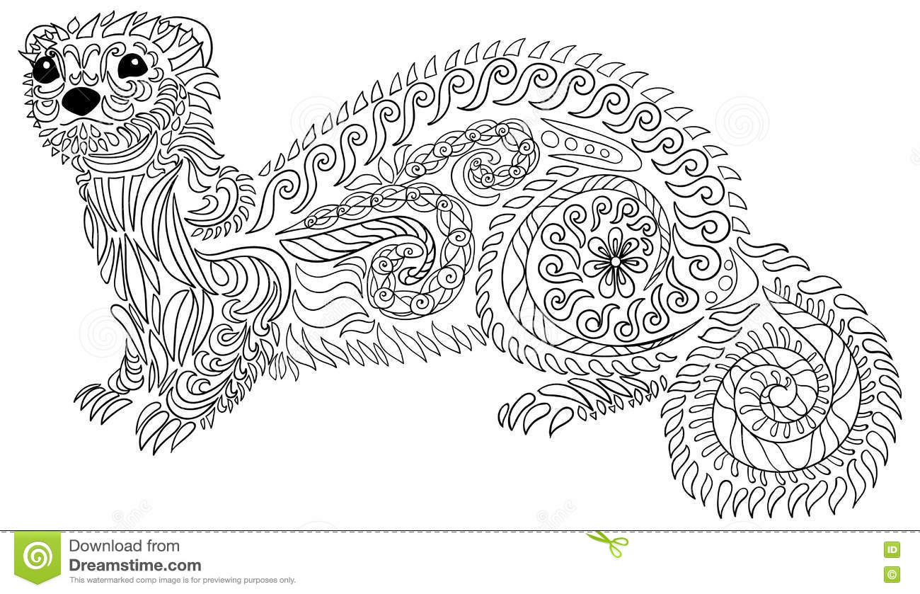 Hand drawn ferret with high details stock vector image for Ferret coloring pages
