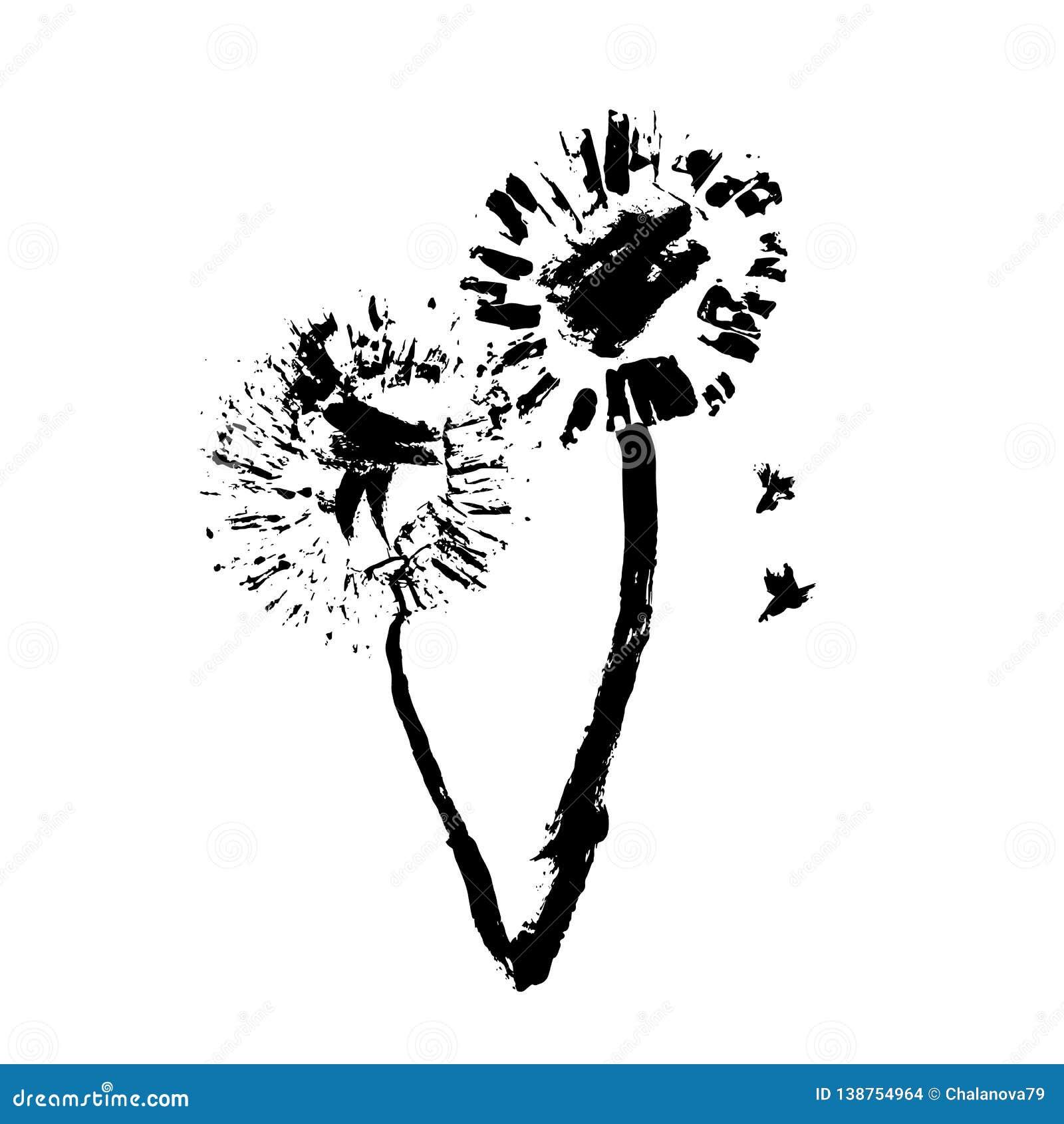 Hand drawn flower on white background. Hand drawn dandelion. Vec