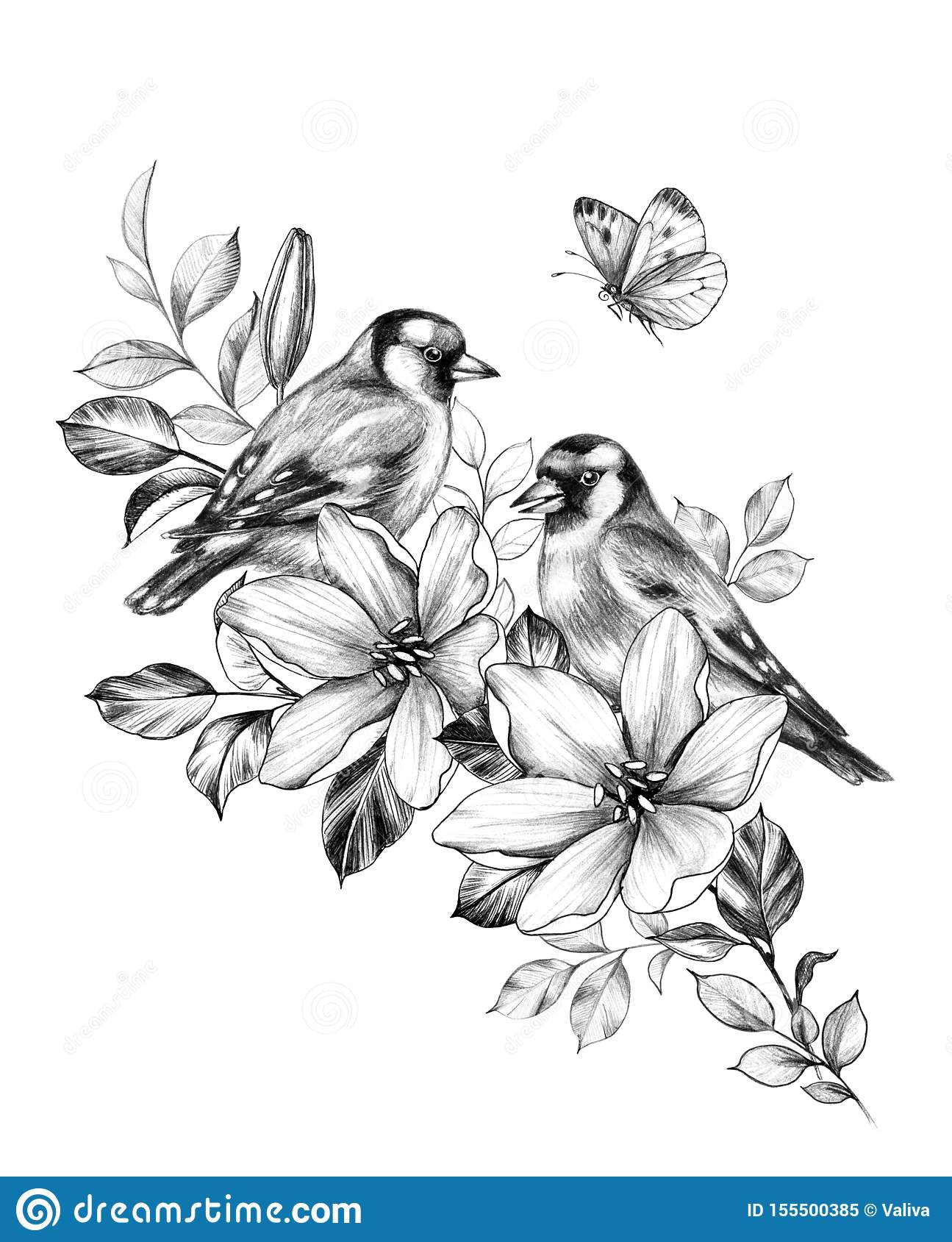 Hand Drawn Goldfinches Sitting On Branch Flower Stock Illustration Illustration Of Cute European 155500385