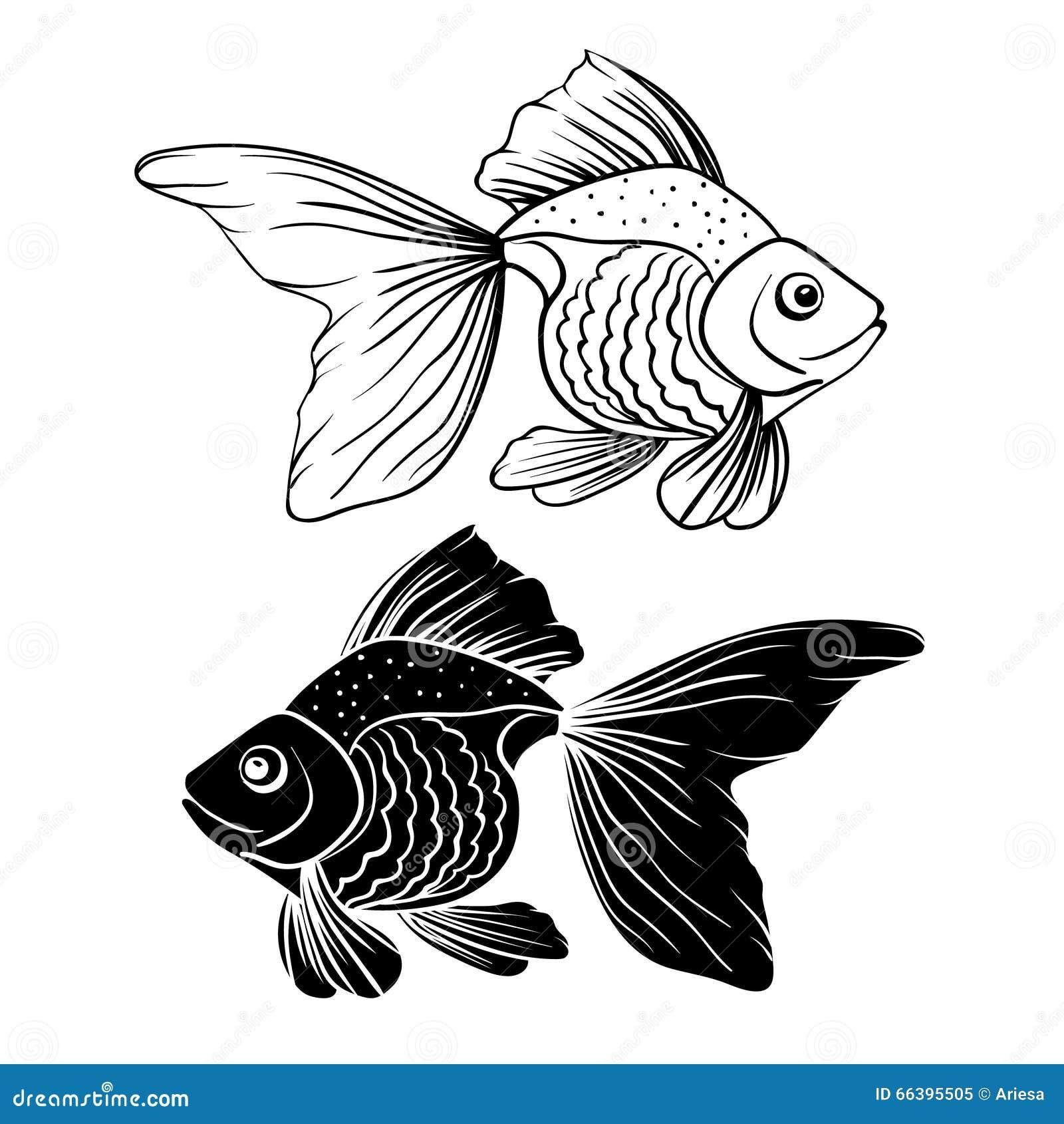 Hand Drawn Goldfish Stock Vector - Image: 66395505