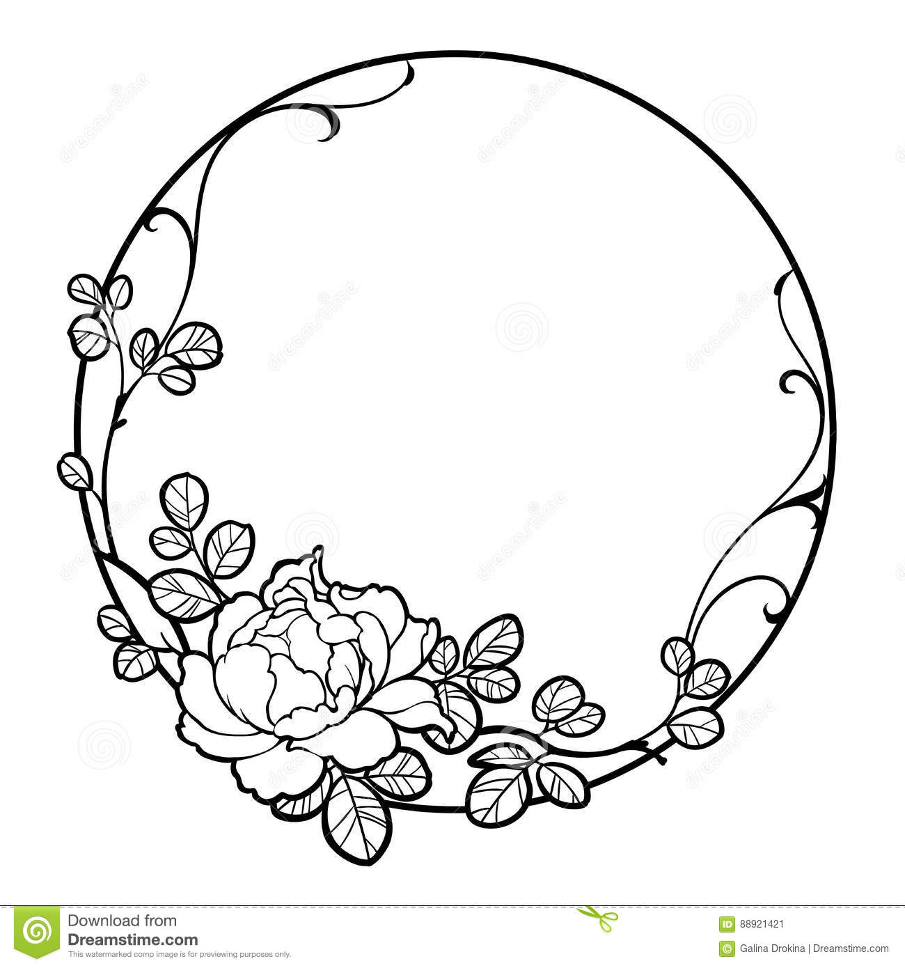Flower Frame Line Drawing : Hand drawn group peony rose flower for decorate stock