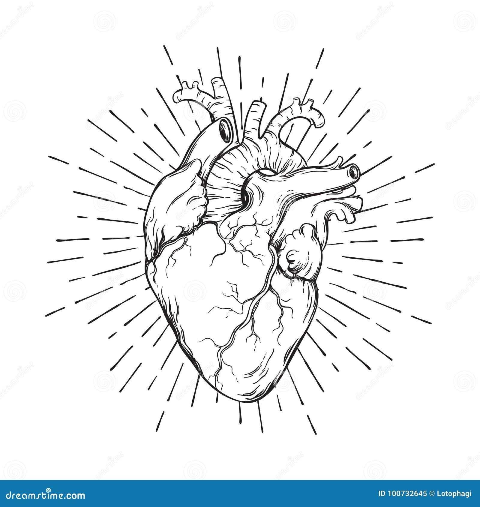 Heart Flash Stock Illustrations 4 331 Heart Flash Stock Illustrations Vectors Clipart Dreamstime